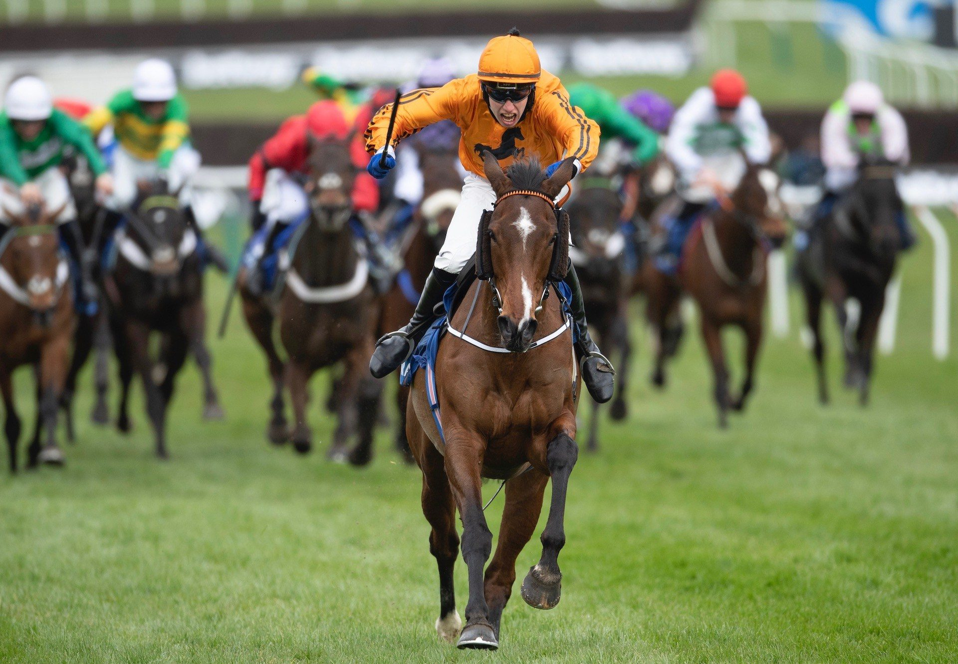 Heaven Help Us (Yeats) Wins The Coral Cup At Cheltenham