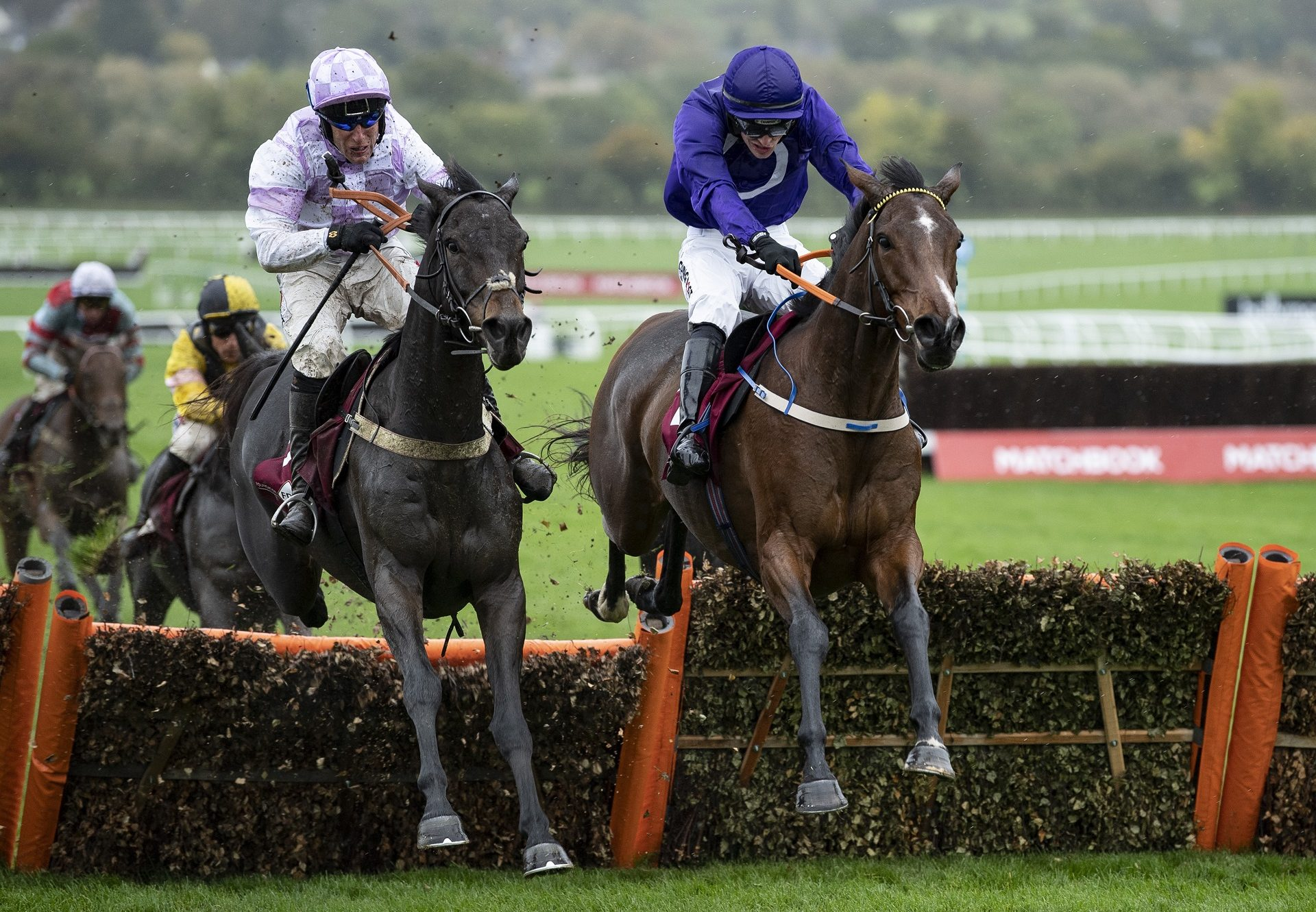 Heaven Help Us (Yeats) winning a maiden hurdle at Cheltenham