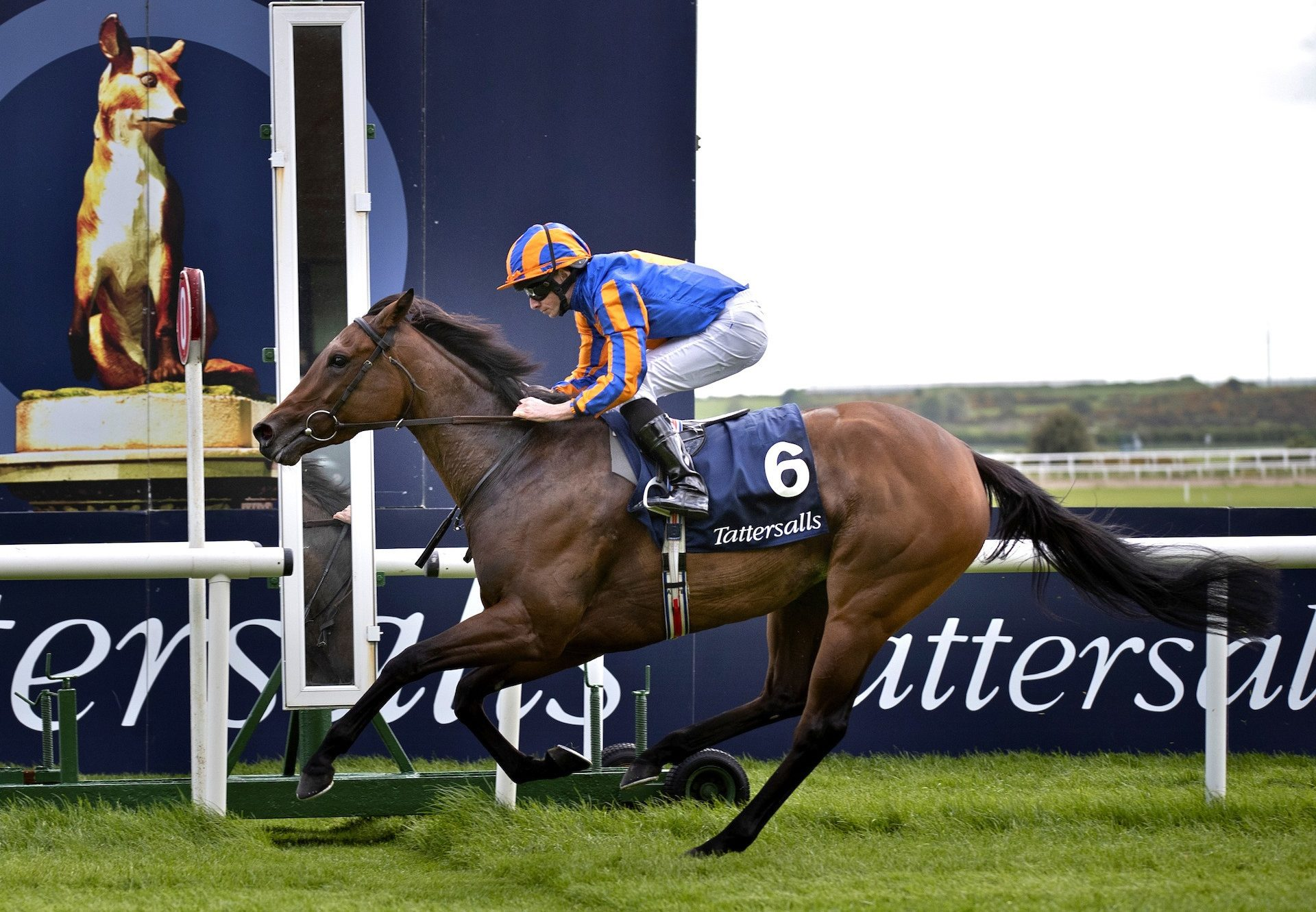 Hermosa Completed The Guineas Double