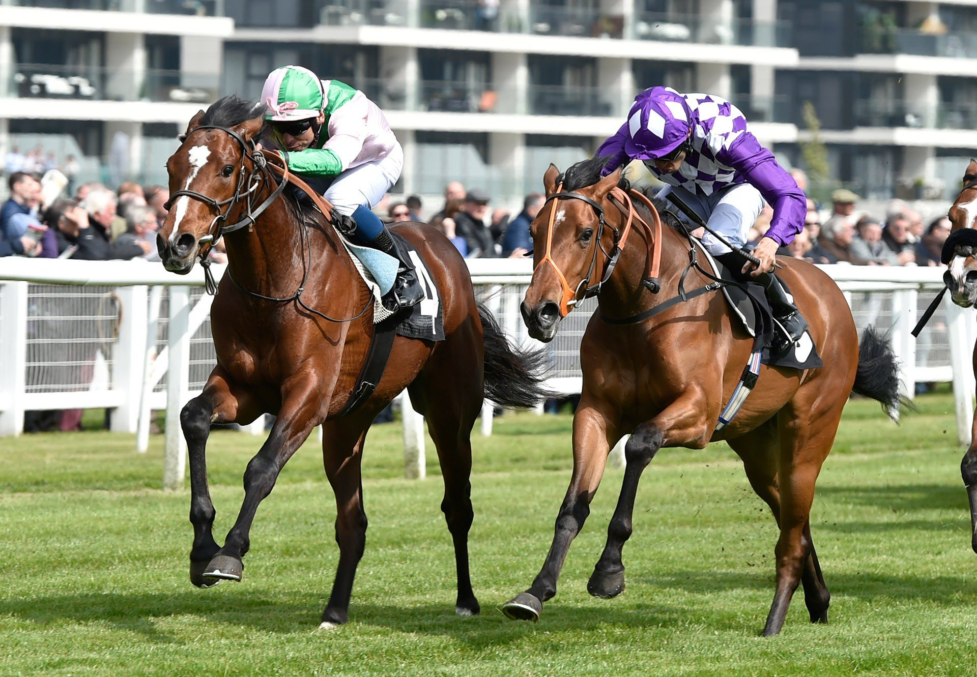 Highland Chief (Gleneagles) winning at Newbury
