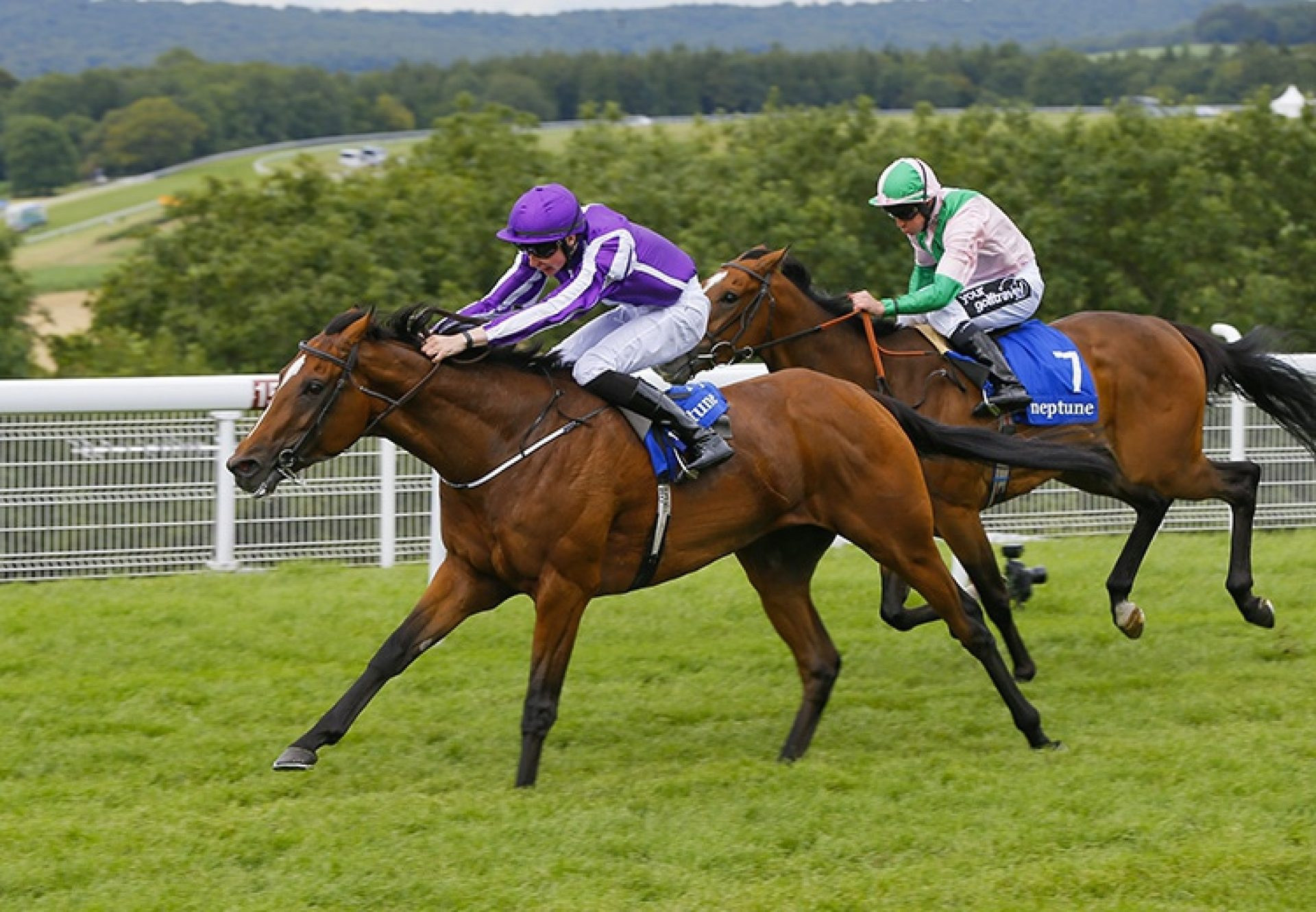 Highland Reel winning the G3 Gordon Stakes at Goodwood