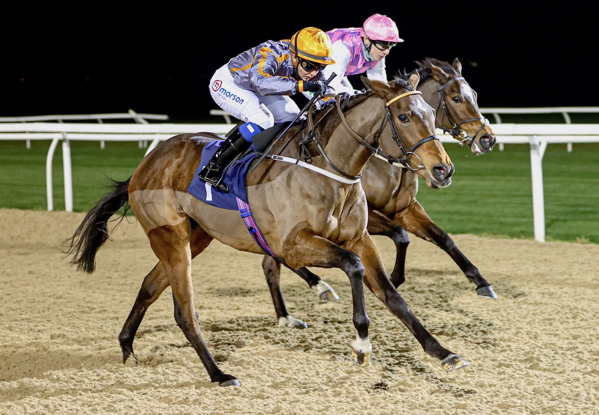 Holy Endeavour (Holy Roman Emperor) Wins At Newcastle