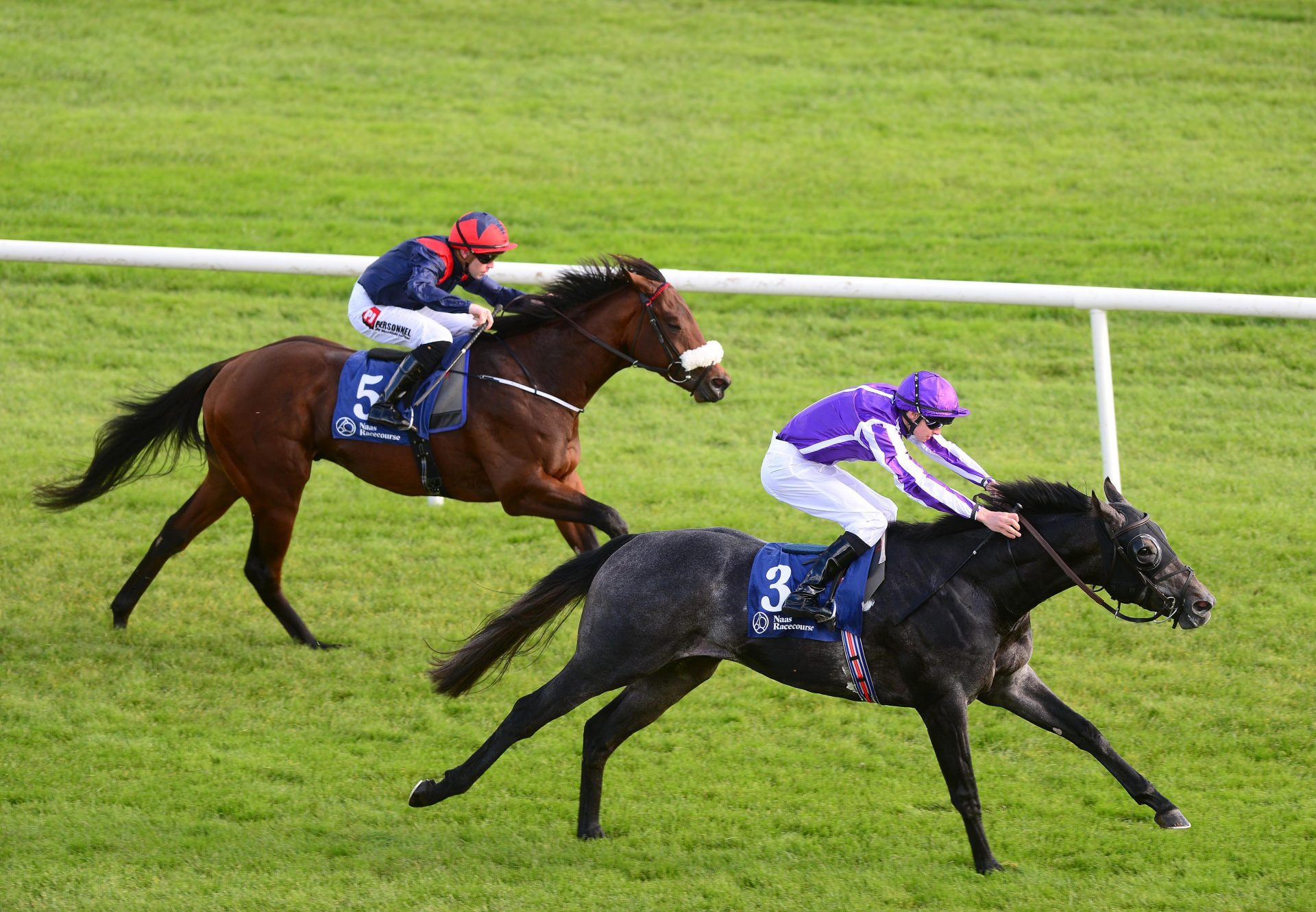 Hong Kong (American Pharoah) winning his maiden at Naas