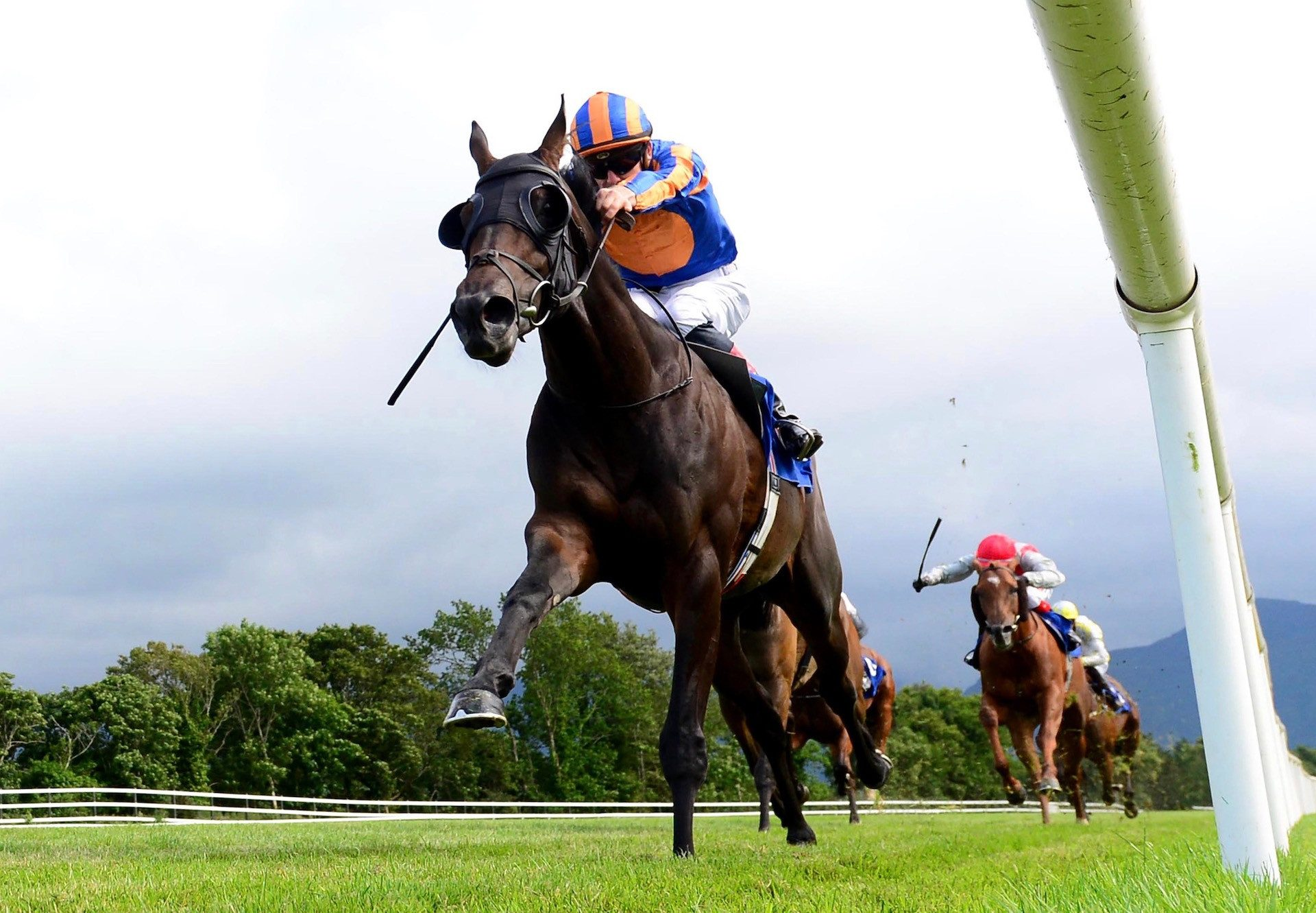 Horoscope Wins The Irish Stallion Farms Ebf Race At Killarney 1