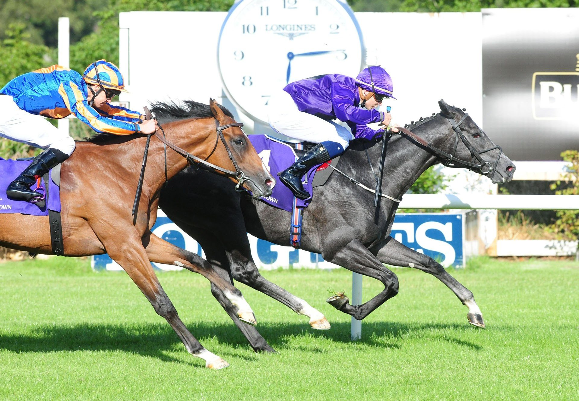 Howling Wolf (Footstepsinthesand) winning at Leopardstown