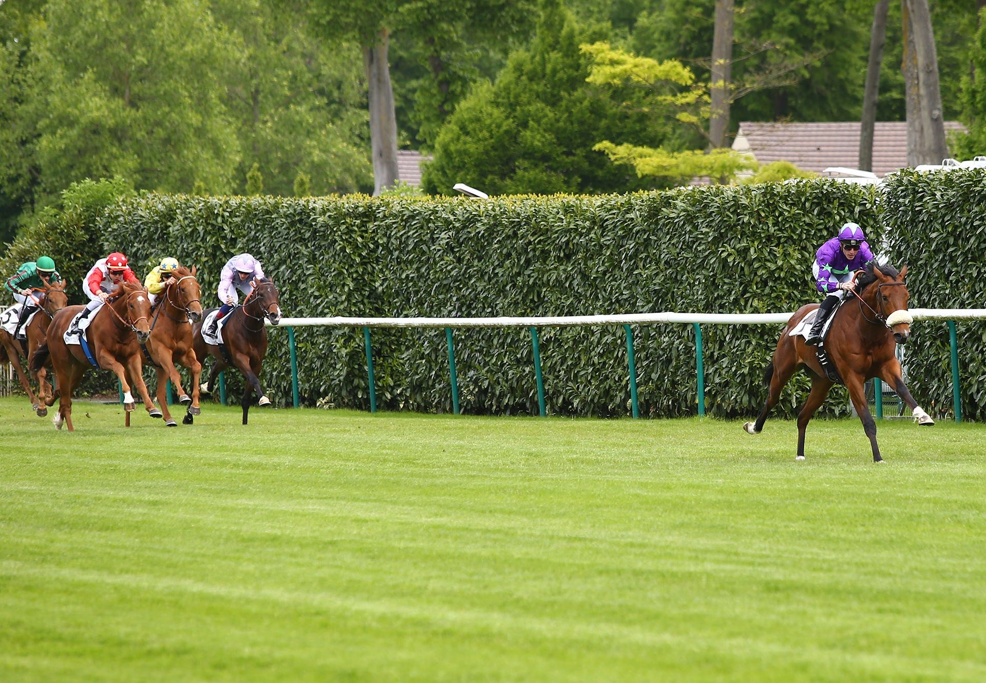 Hurricane Ivor (Ivawood) winning his maiden at Chantilly