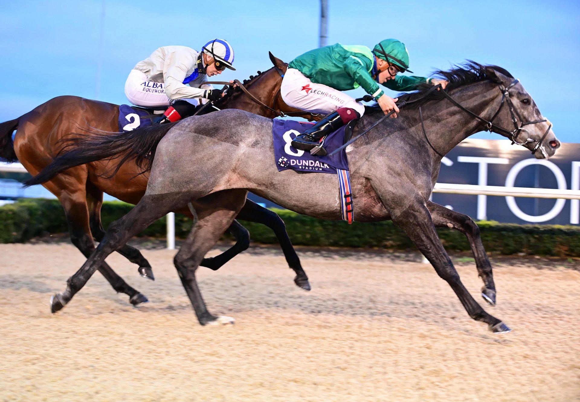 Shanghai Noon (Shanghai Bobby) winning at Gulfstream