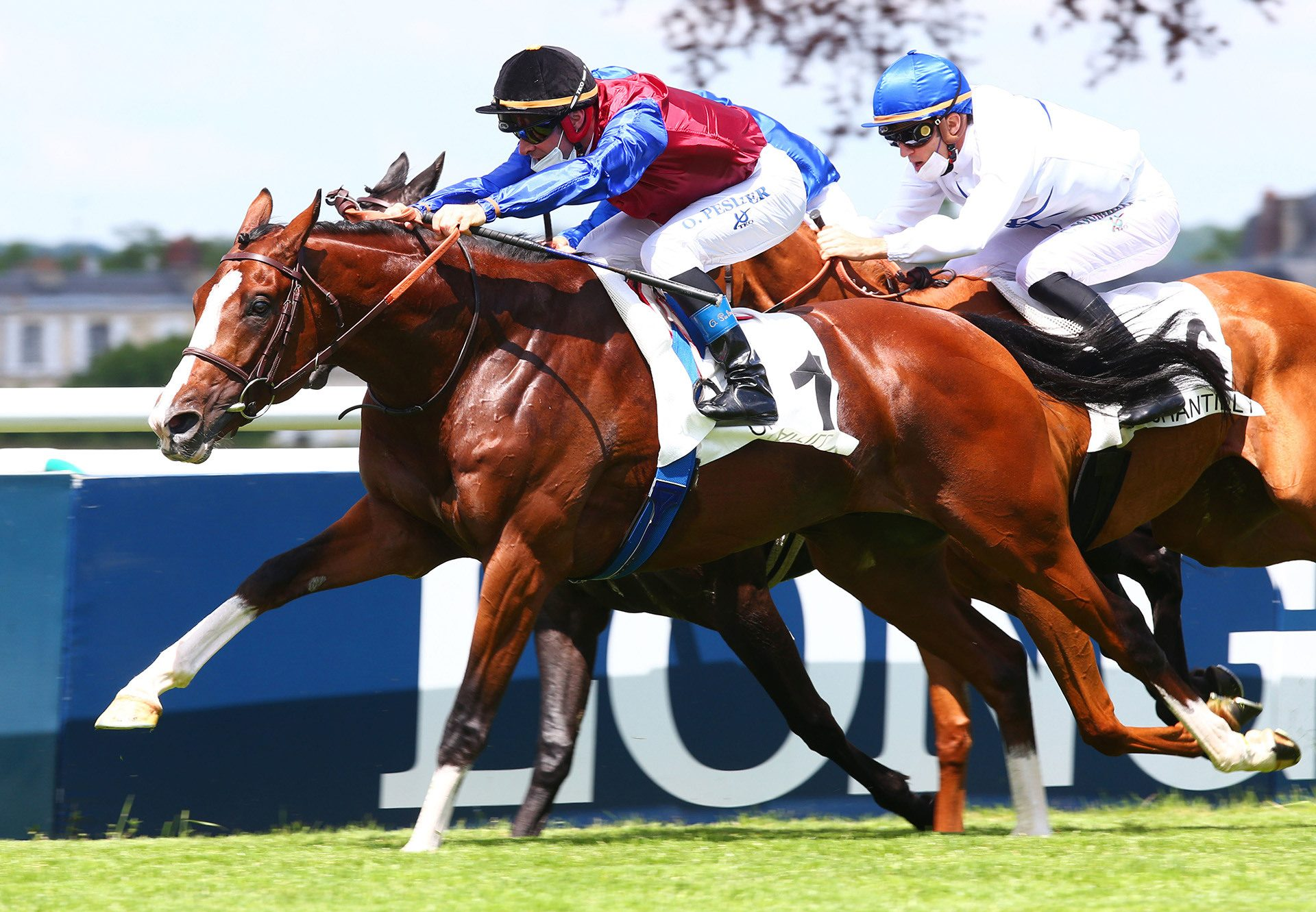 Holy Snow (Fastnet Rock) winning the G3 Autumn Stakes at Caulfield