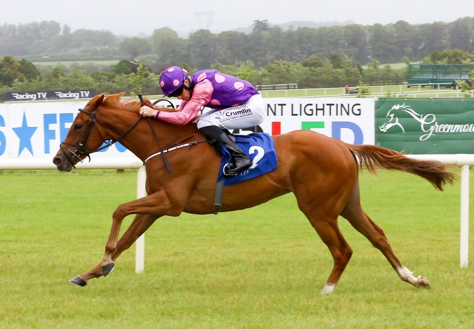 Highland Reel winning the Vintage Stakes