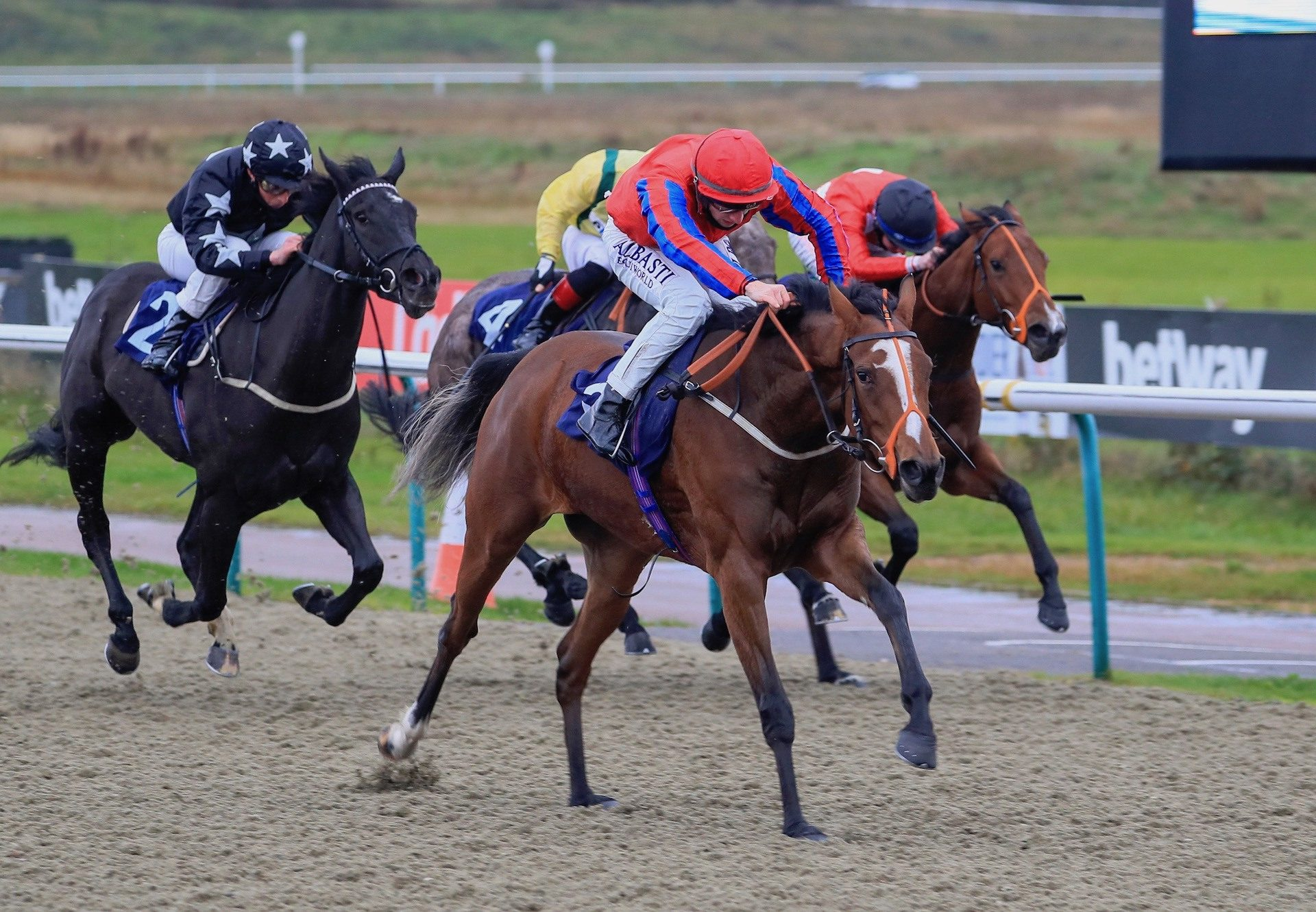 Invite (The Gurkha) Wins On Debut At Lingfield