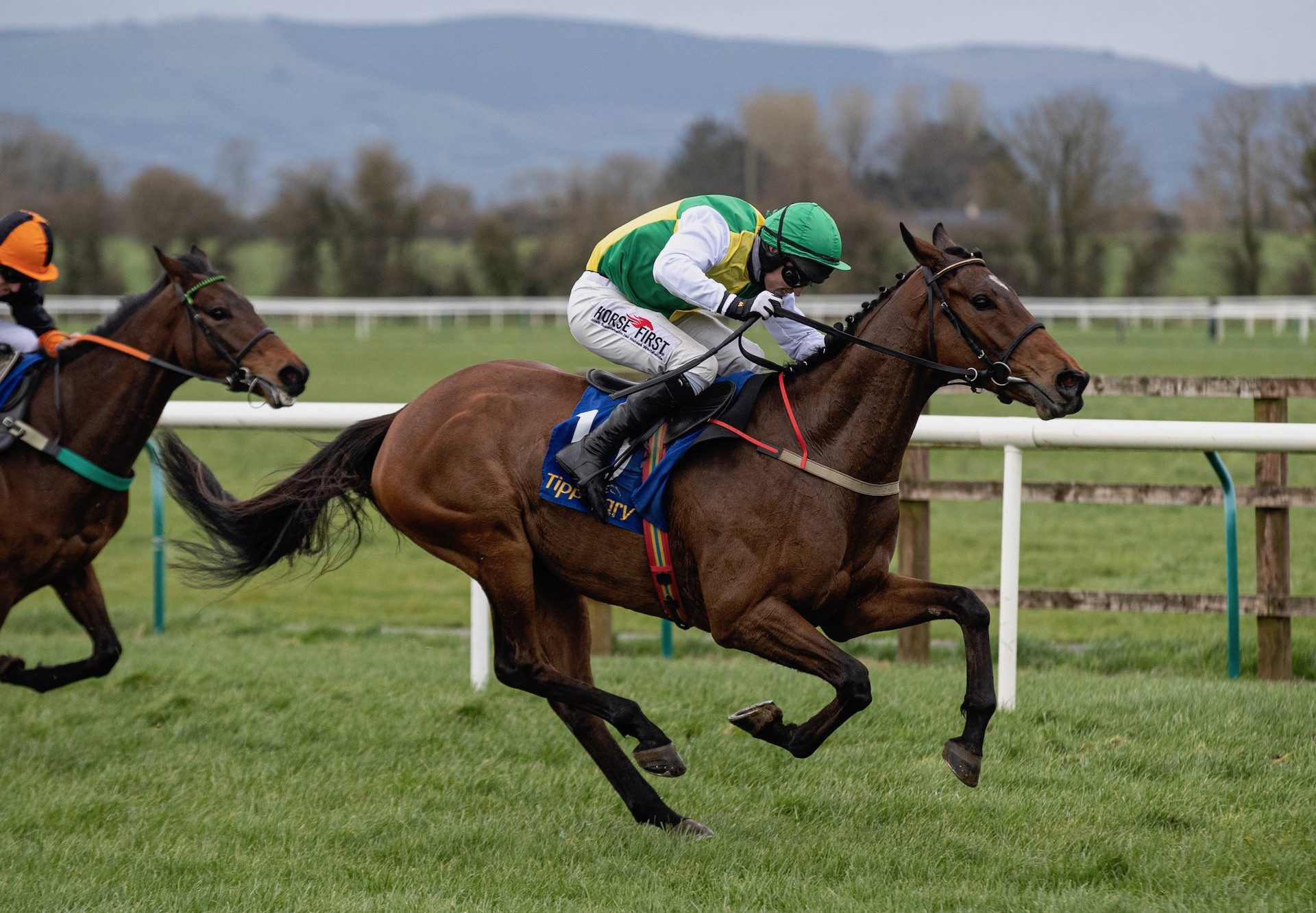 Iron Bridge (Milan) Wins At Tipperary
