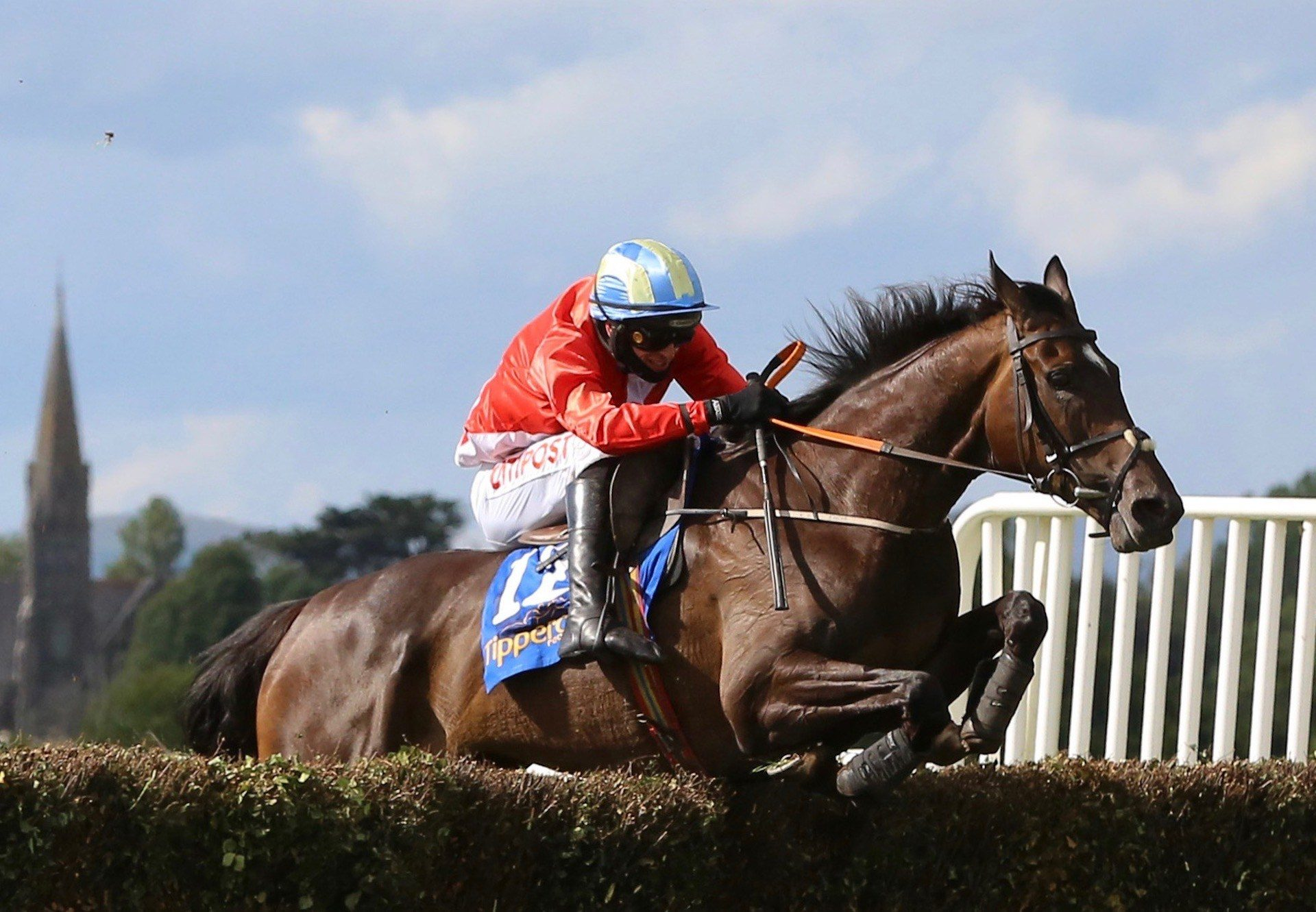 Janeymac (Milan) winning a Beginners Chase at Tipperary