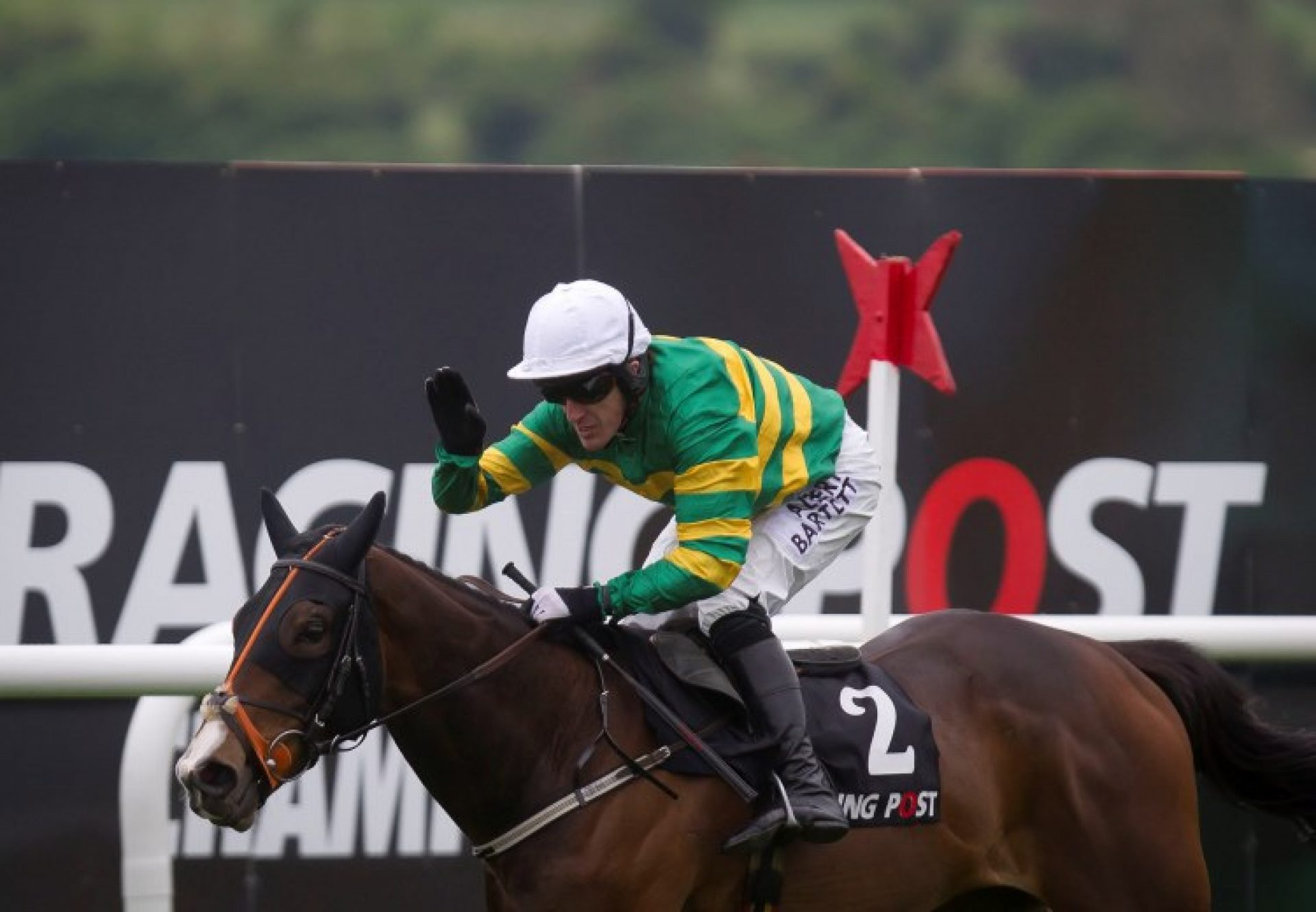 Jezki (Milan) winning the G1 Racing Post Champion Hurdle at Punchestown