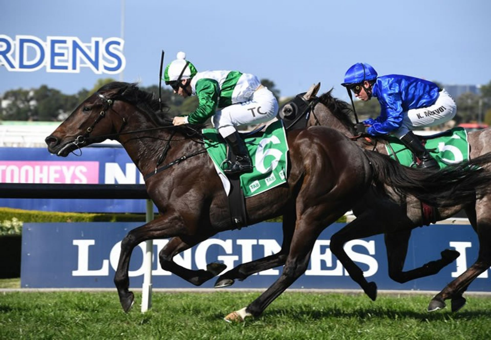 Just Thinkin (So You Think) winning the Listed Dulcify Stakes at Rosehill