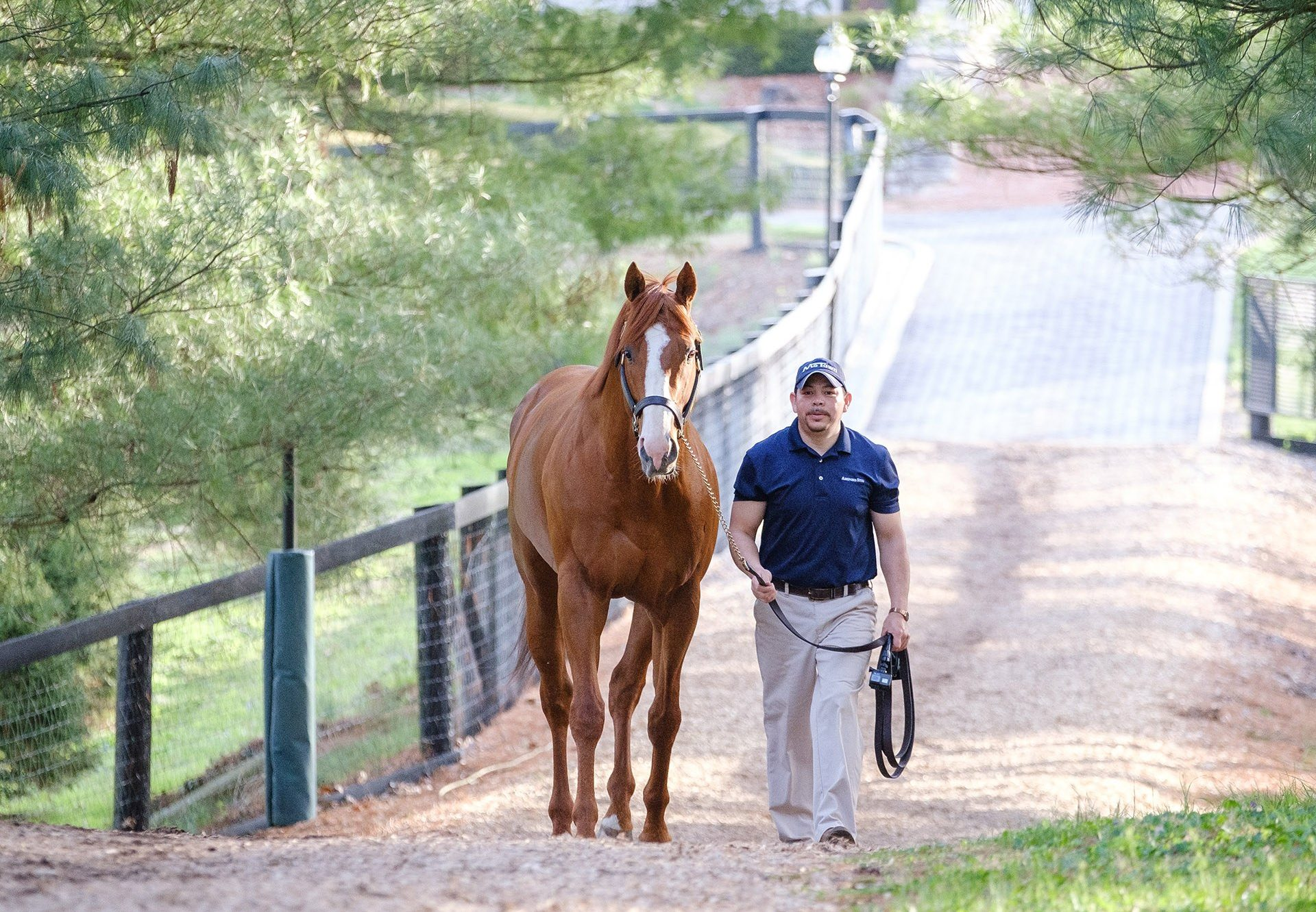 Justify walking
