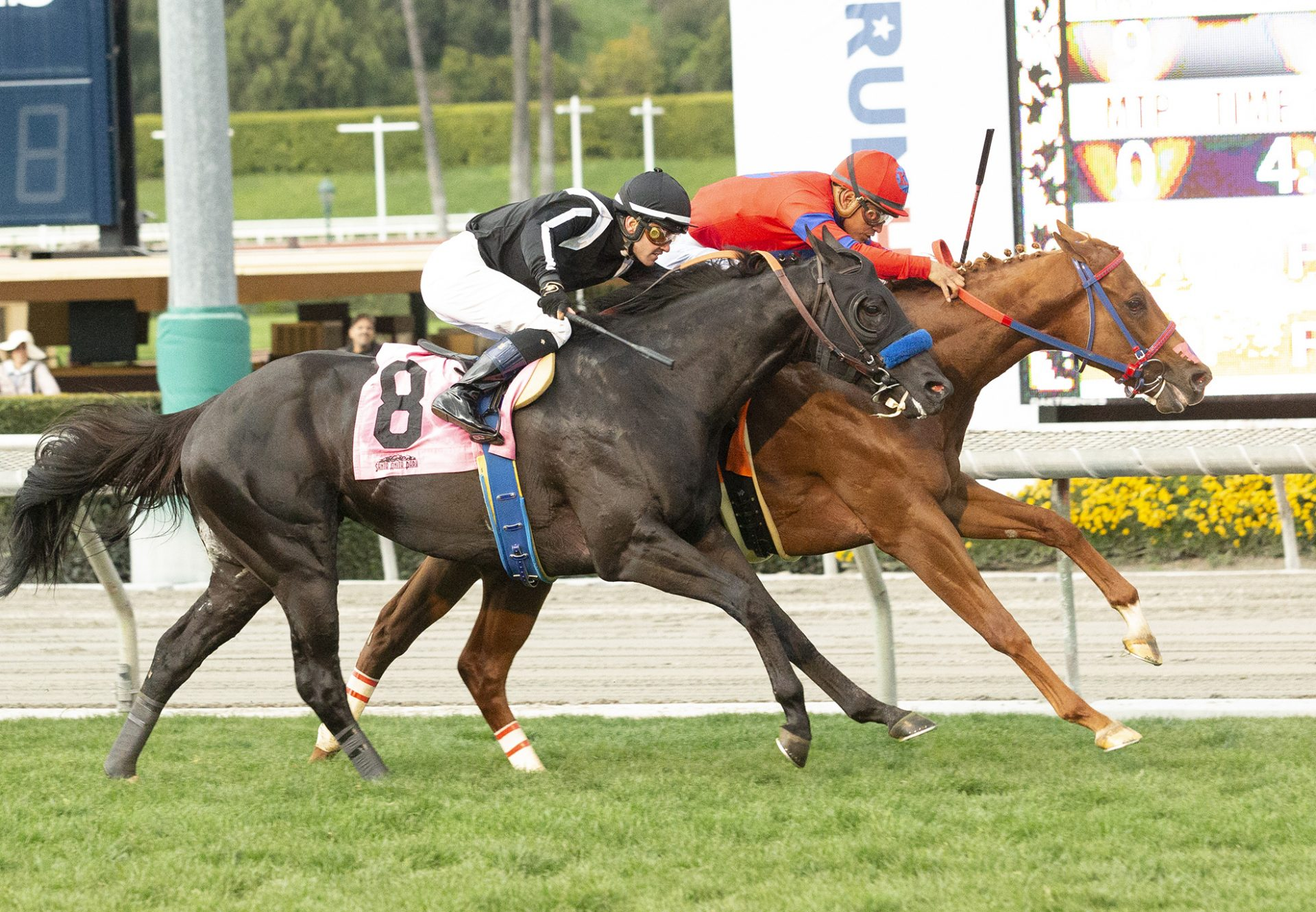 K P Indy (Competitive Edge) wins Santa Anita maidenaiden Winner