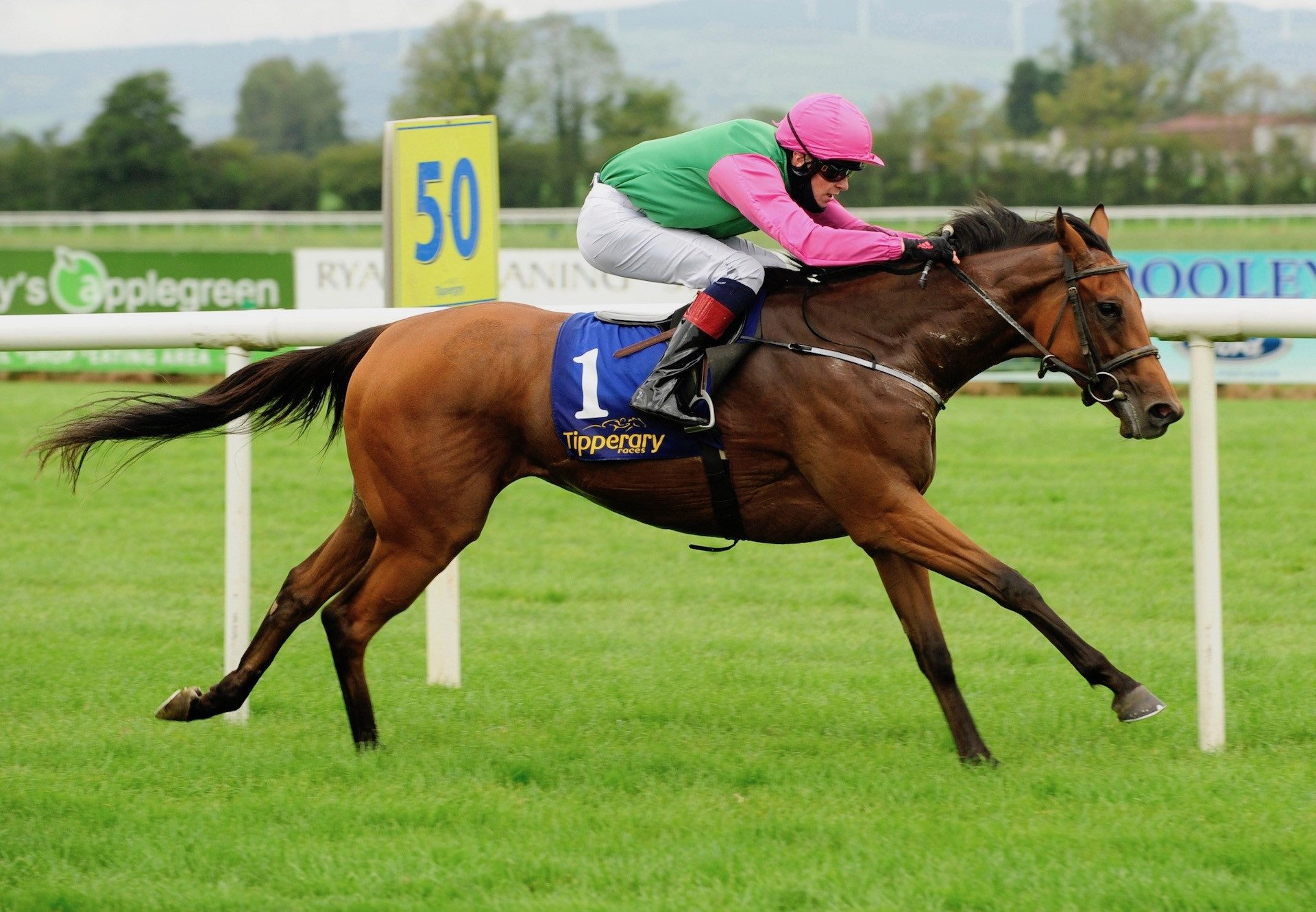 Kaluz (The Gurkha) Wins At Tipperary