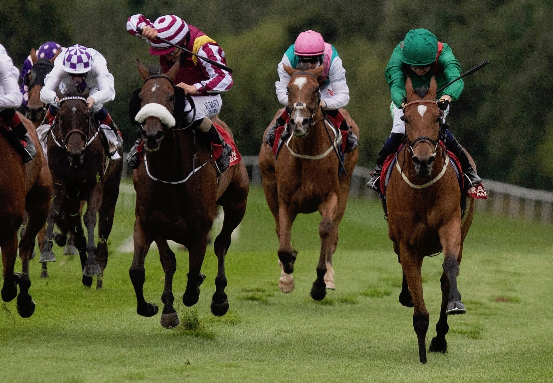 Kastasa (Rock Of Gibraltar) Wins The Listed Vintage Tipple Stakes at Gowran Park