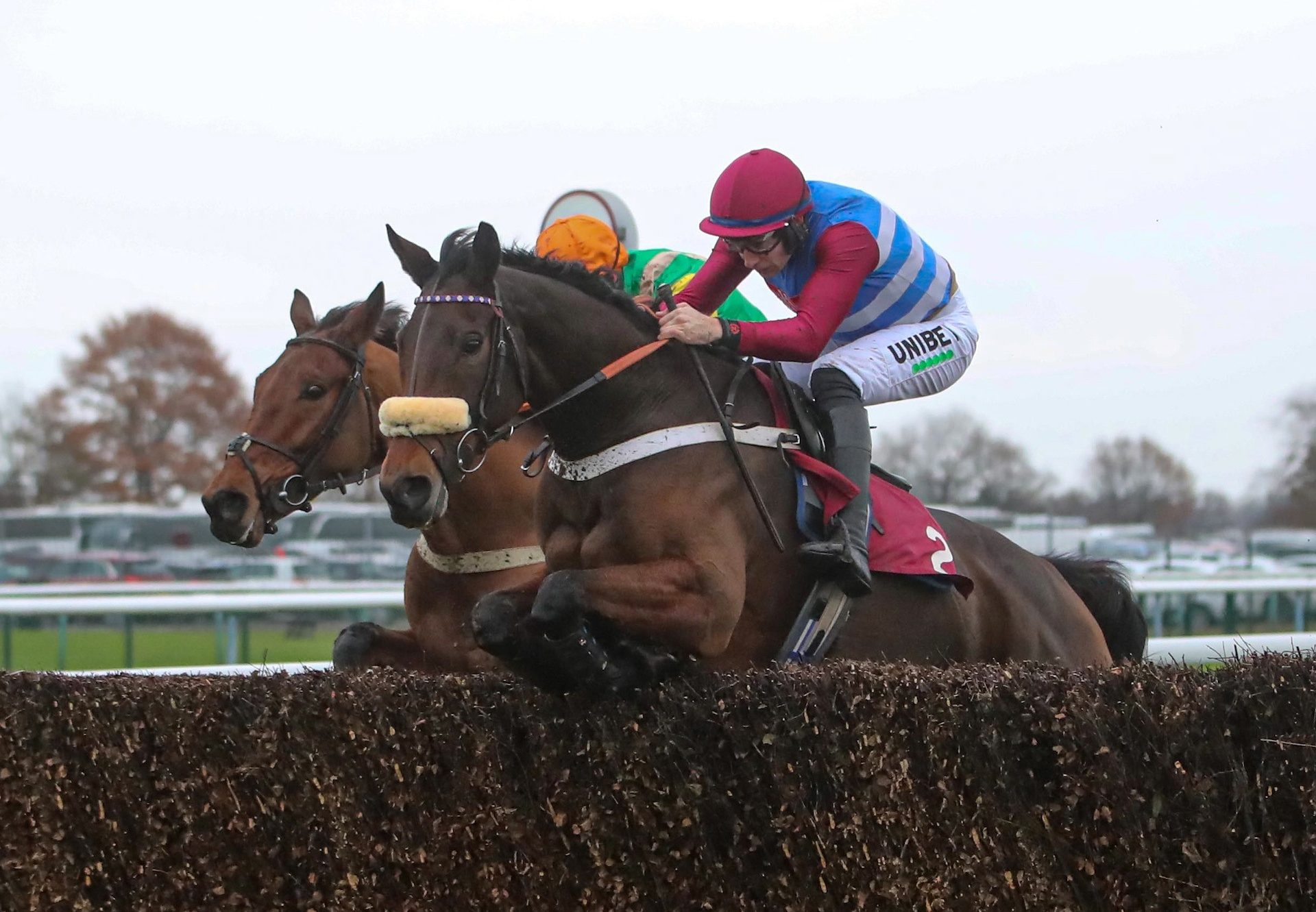 Keeper Hill (Westerner) Wins The Graduation Chase At Haydock