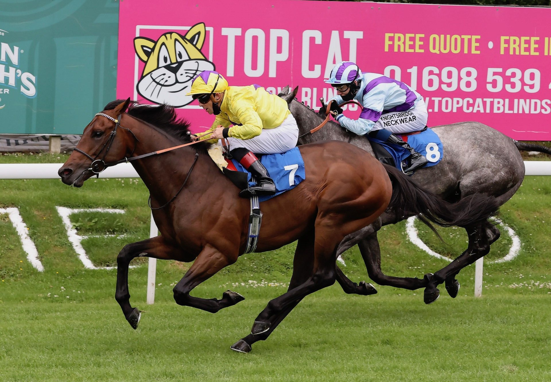King Fairy Becomes The Latest Winner By Australia