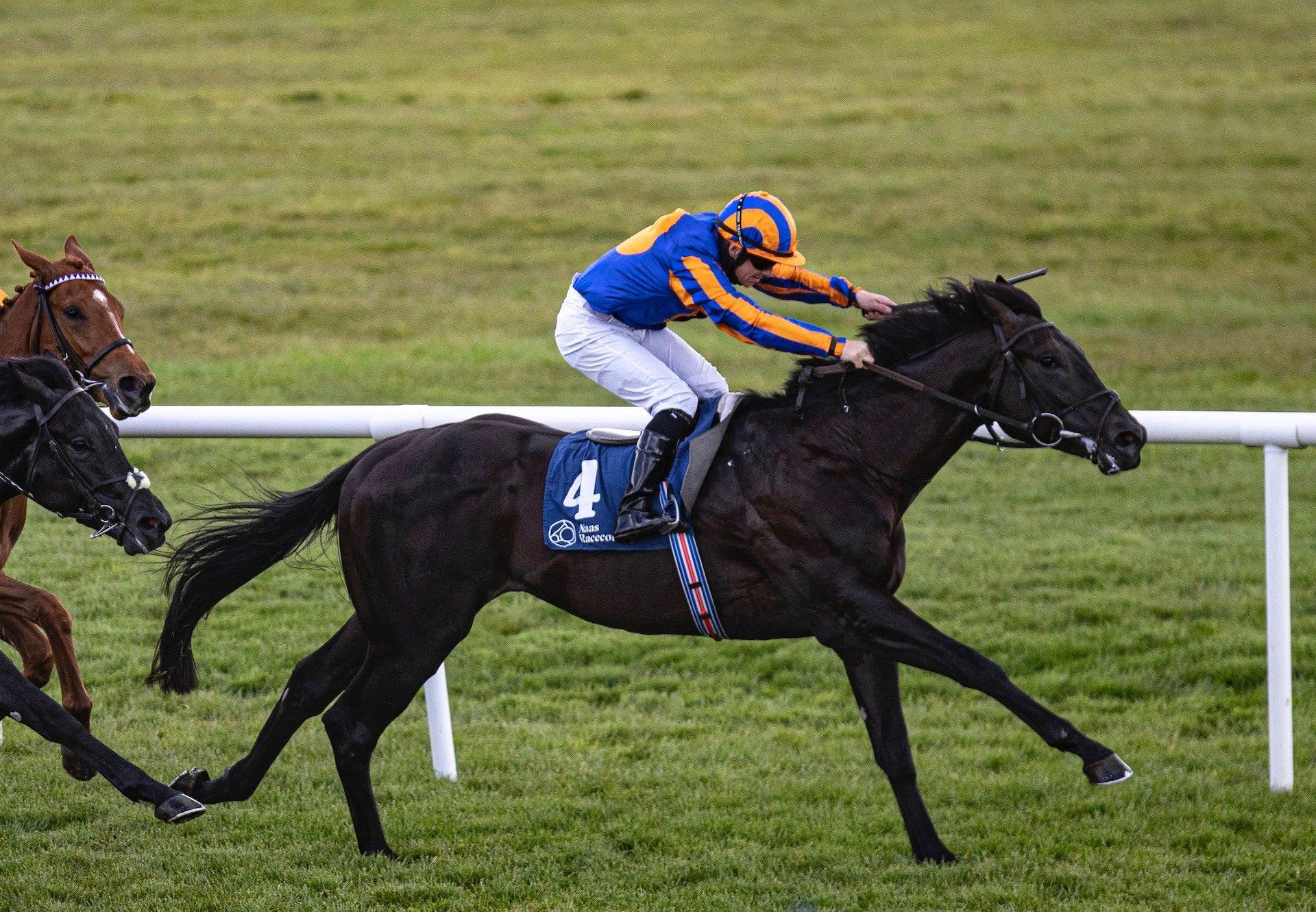 King Of Bavaria (No Nay Never) Makes A Winning Debut At Naas