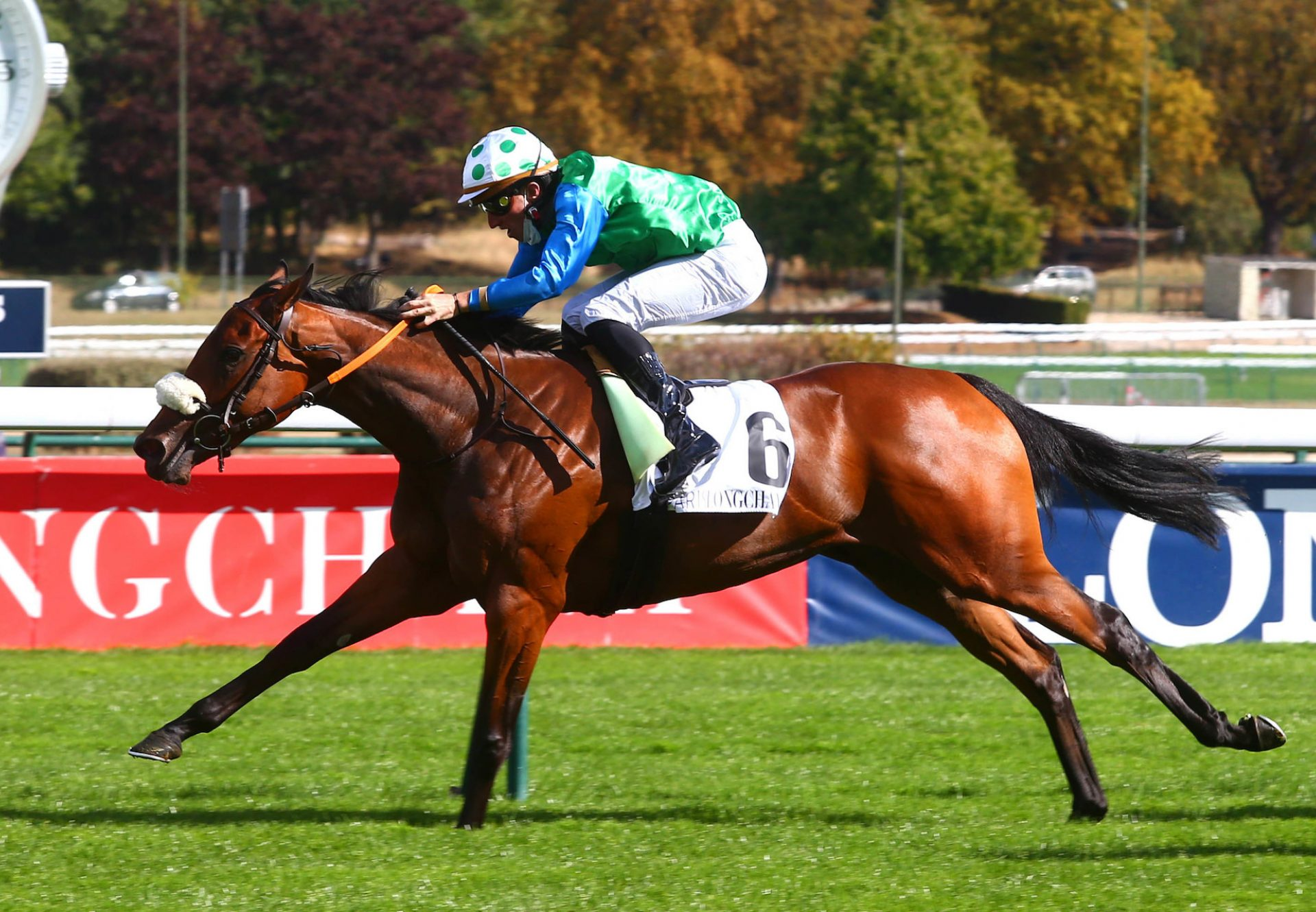 King's Harlequin (Camelot) Winning The Group 3 Prix D'Aumale at Longchamp