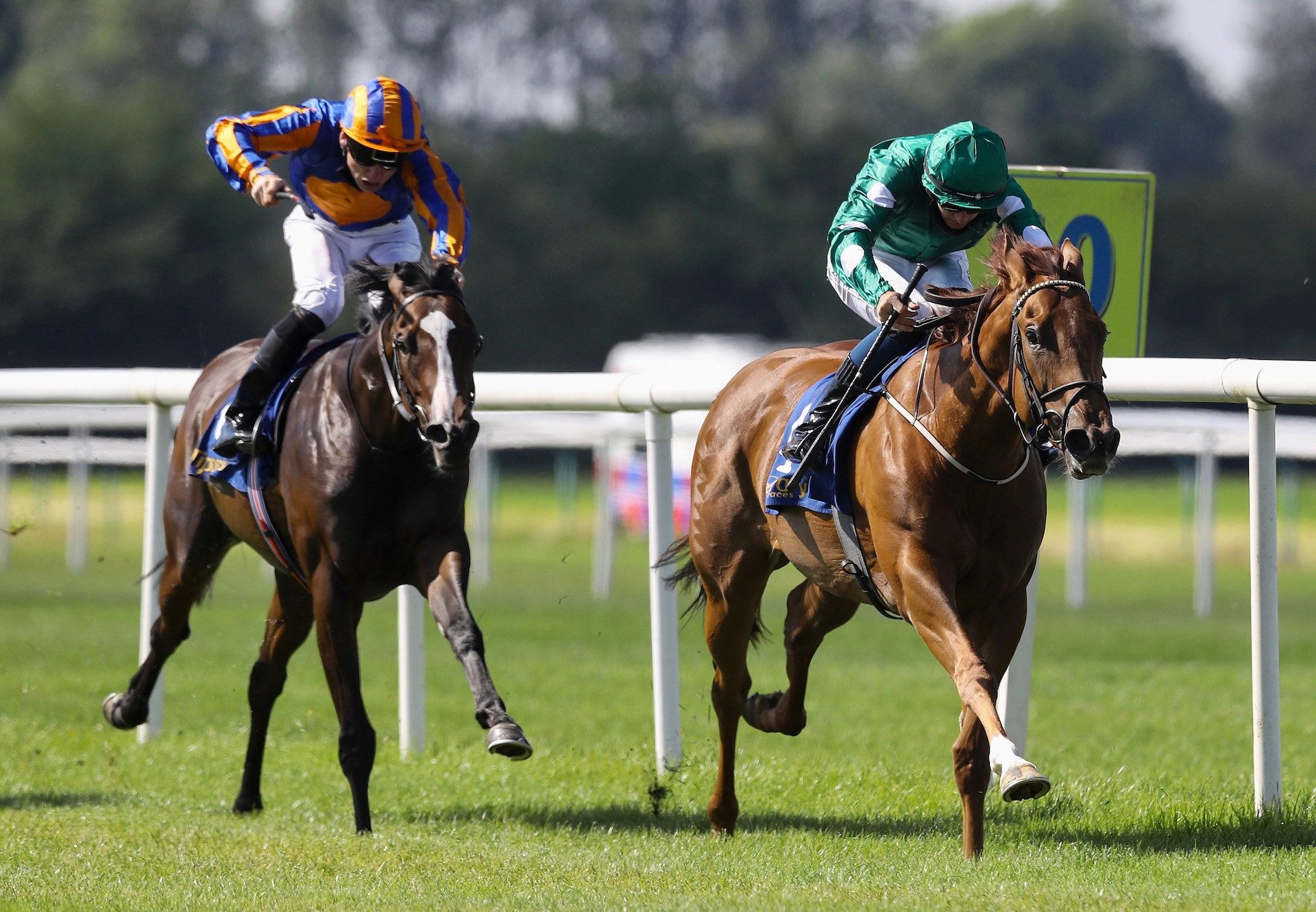 Ladies Church (Churchill) Wins The Fillies Maiden At Tipperary