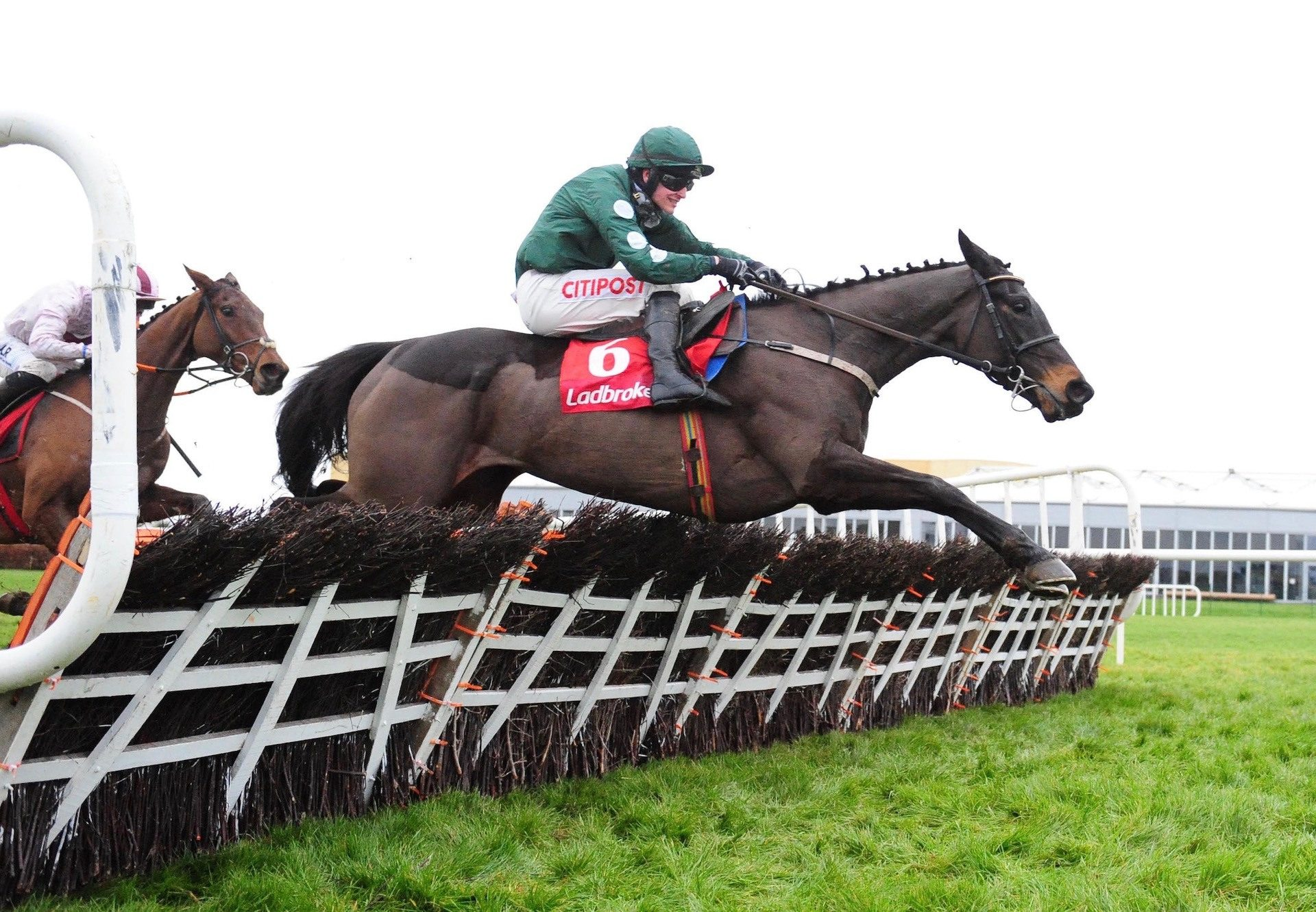 Lady Breffni (Yeats) Wins The Mares Maiden Hurdle At Punchestown
