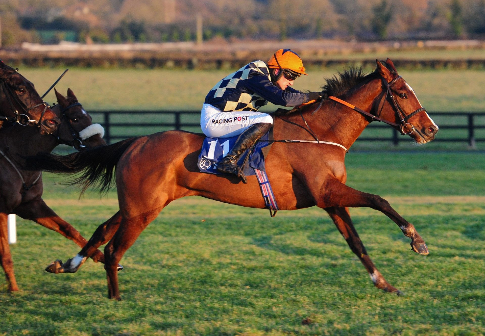 Lady Temperance (Getaway) wins the bumper at Naas