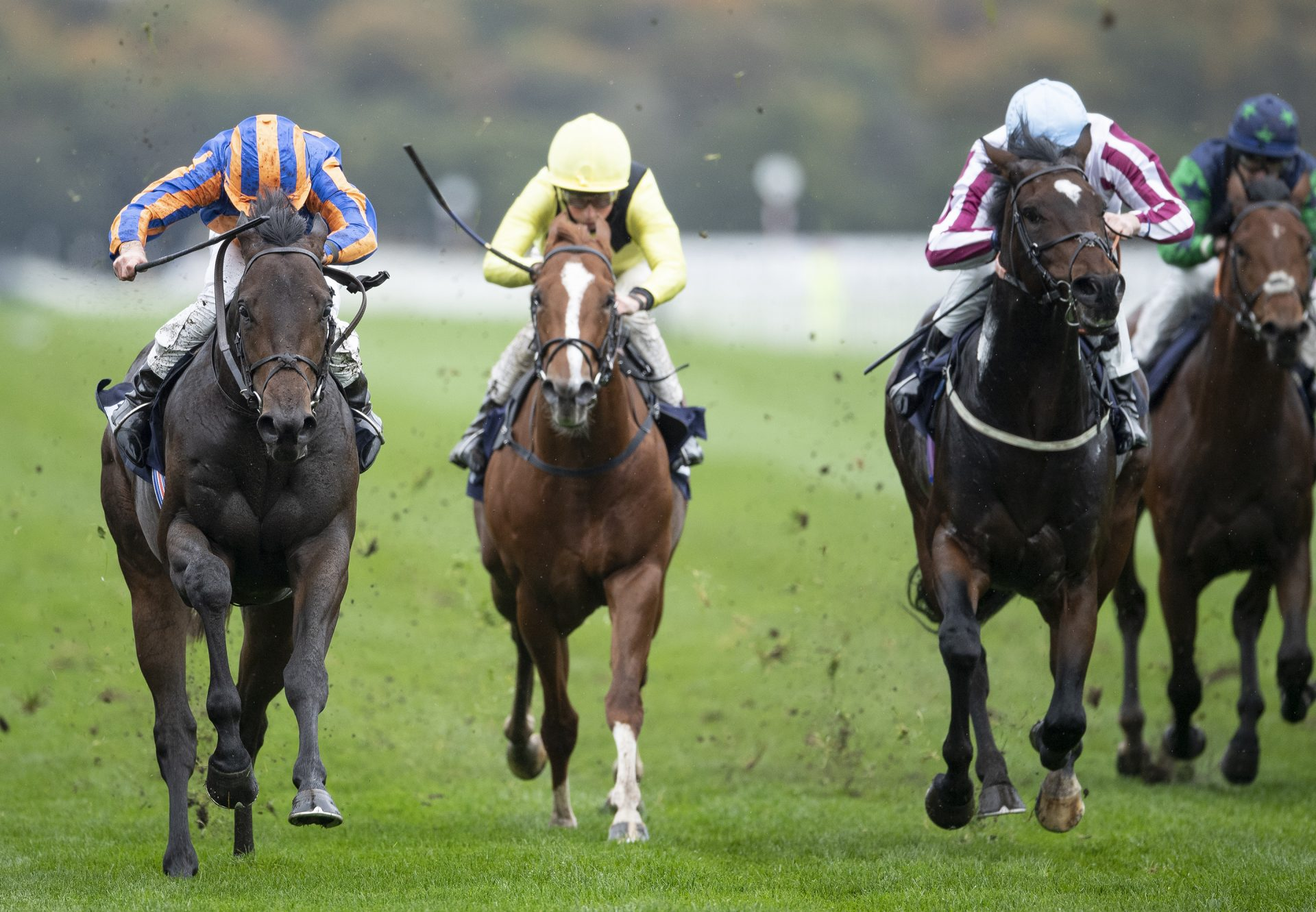 Lipizzaner (Uncle Mo) Wins Listed Doncaster Stakes