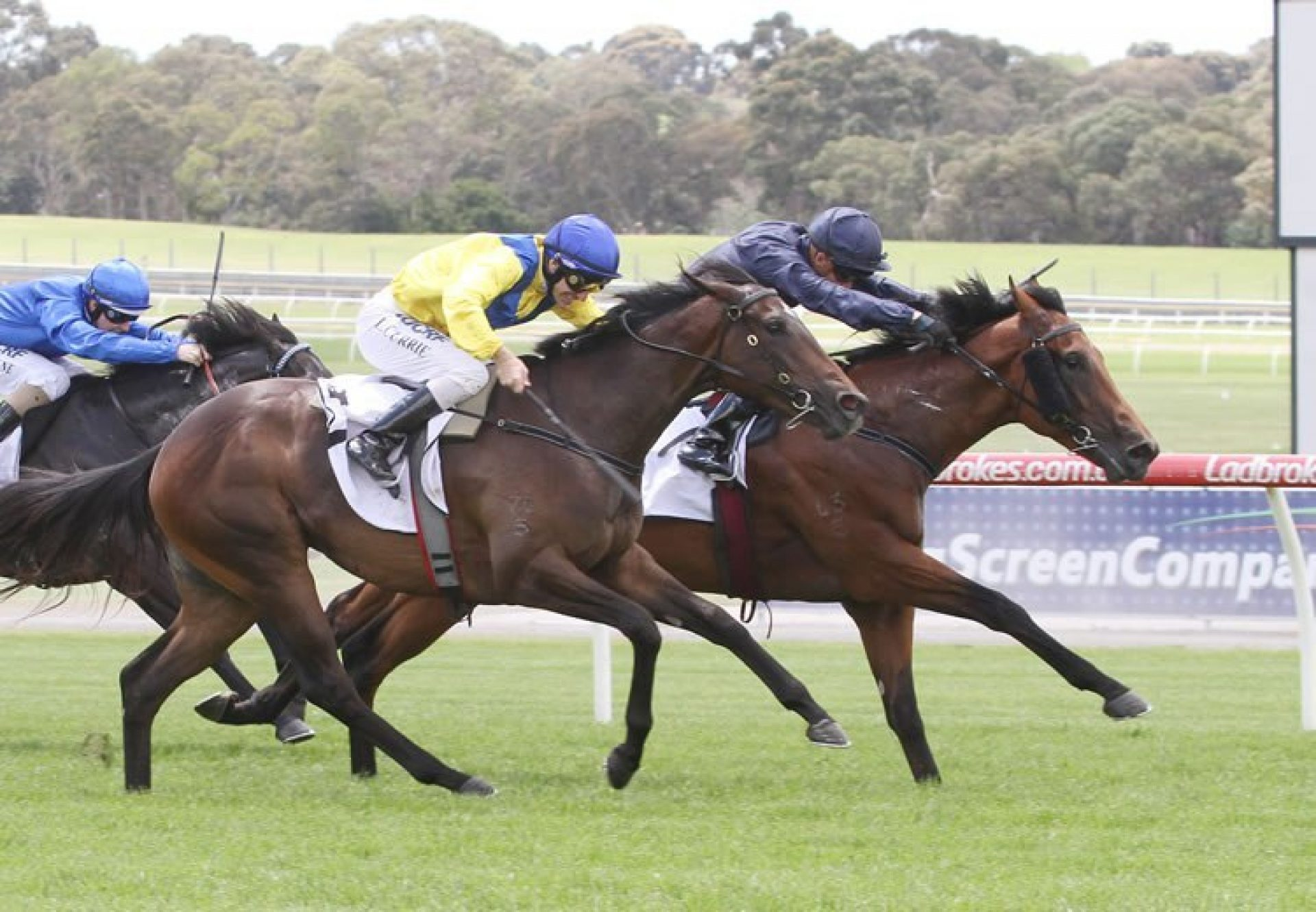 Long Leaf (Fastnet Rock) winning the Listed MRC Merson Cooper Stakes at Sandown
