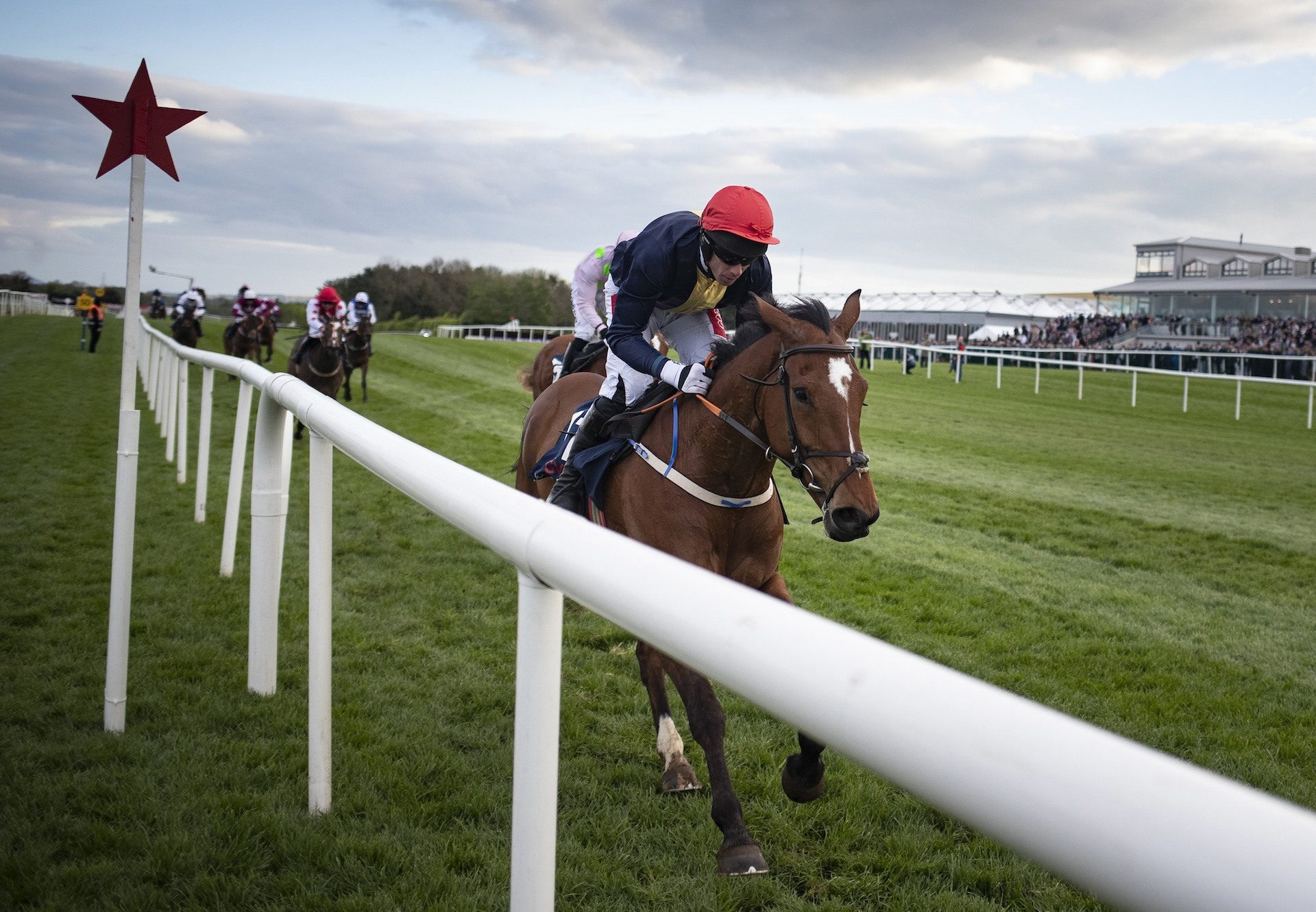 Longhouse Poet (Yeats) Wins At  Punchestown