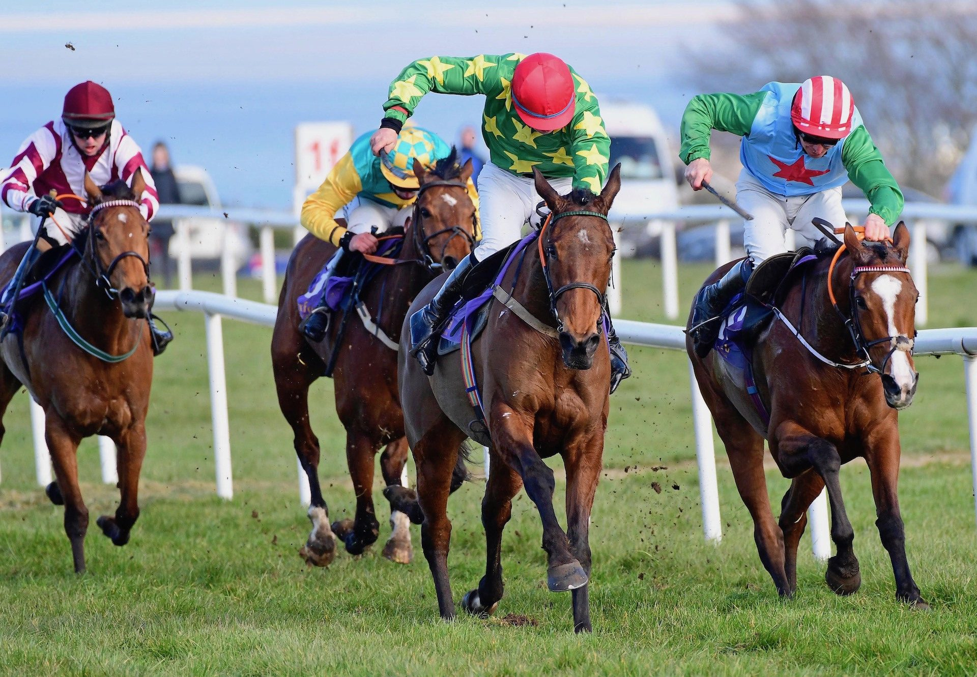 Love Envoi (Westerner) Makes A Winning Debut At Wexford