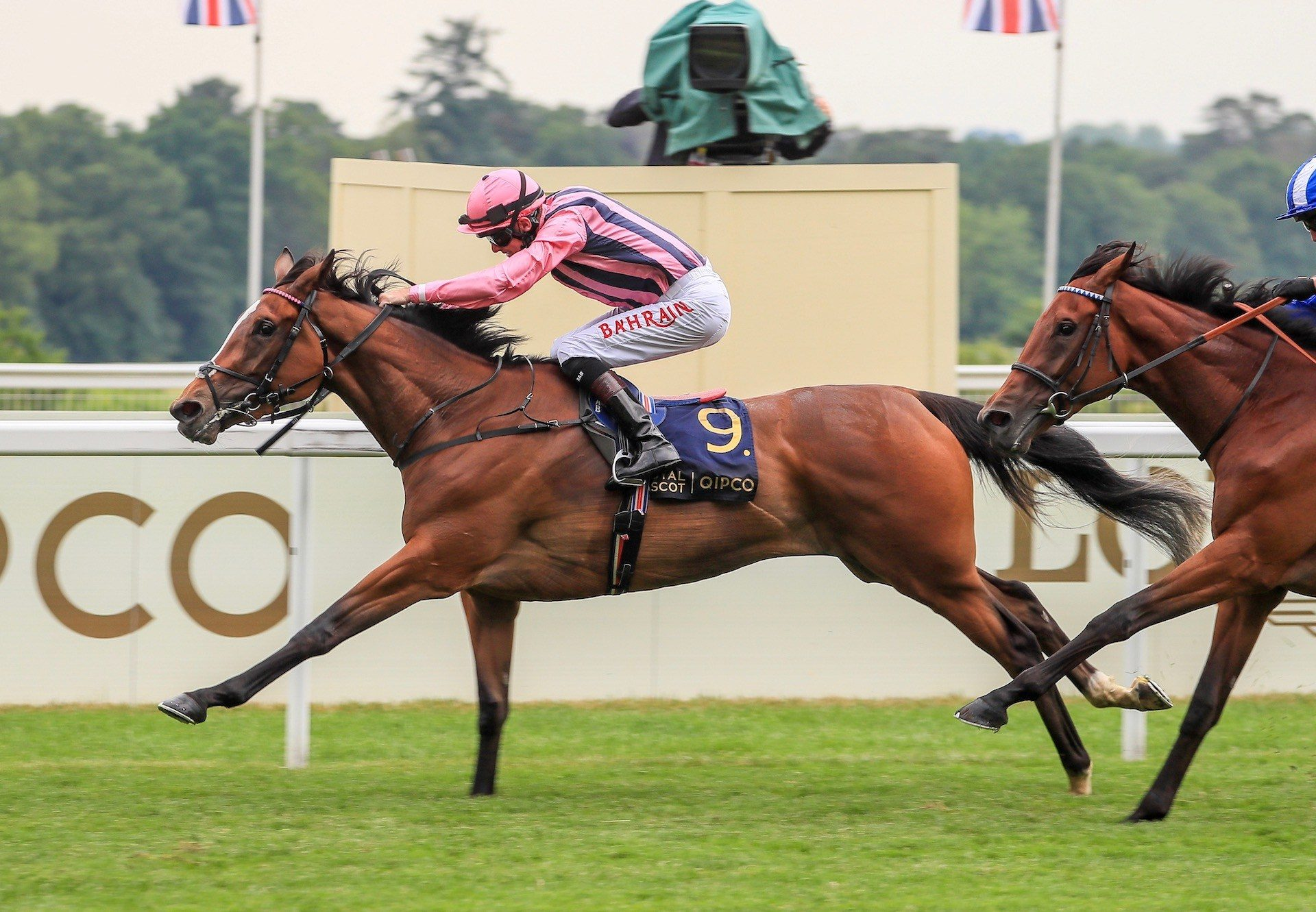 Loving Dream (Gleneagles) Wins The Gr.2 Ribblesdale Stakes at Royal Ascot