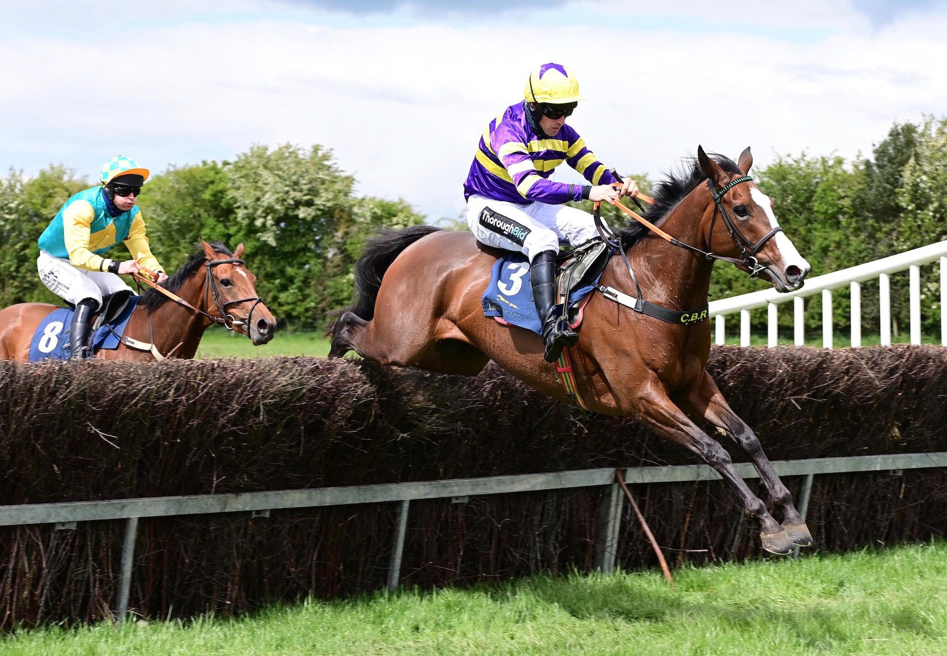 Lucky Light (Leading Light) Lands The 5 YO Mares Maiden At Ballingarry