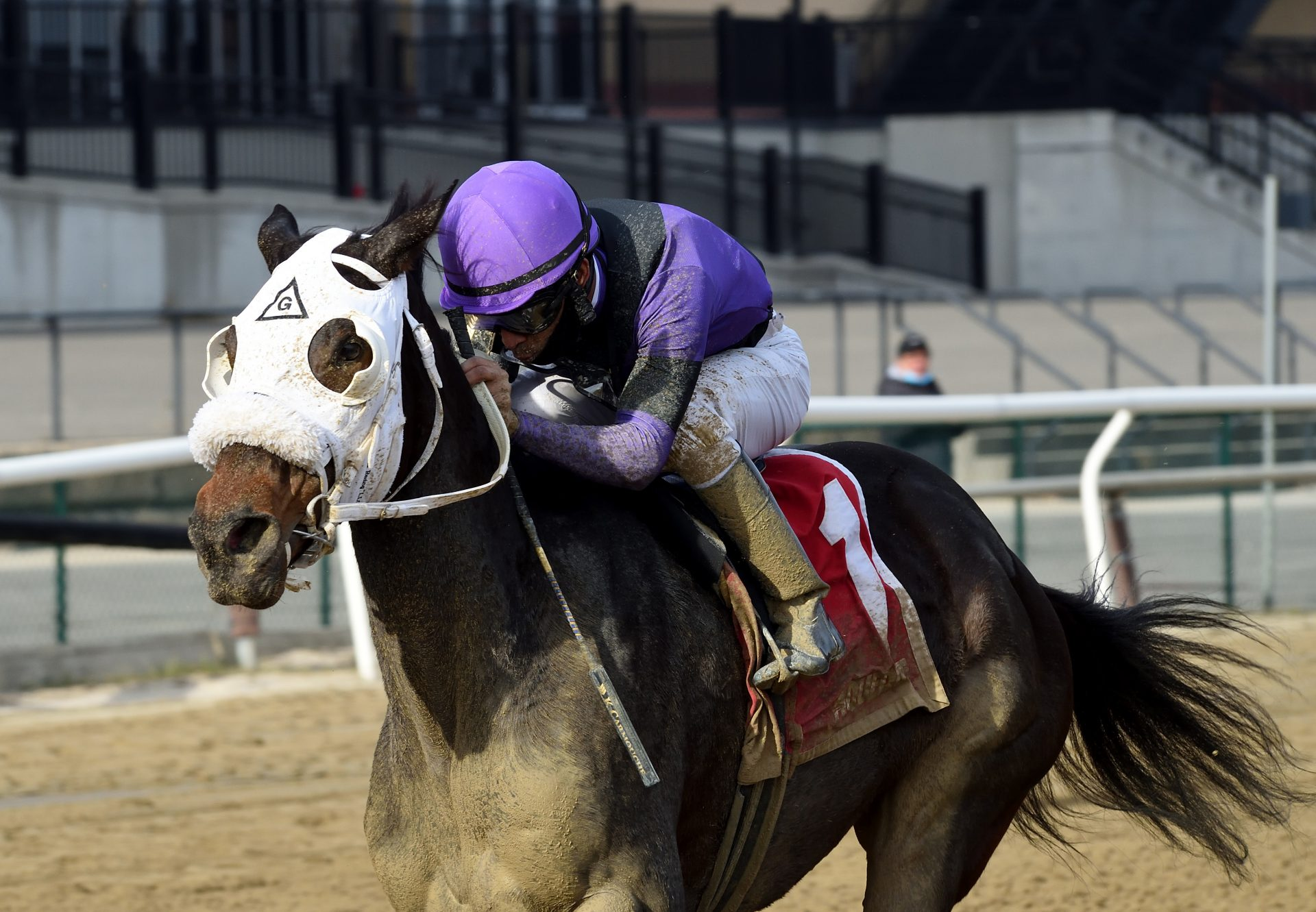 Lucky Move (Lookin At Lucky) Wins The Bay Ridge Stakes at Aqueduct