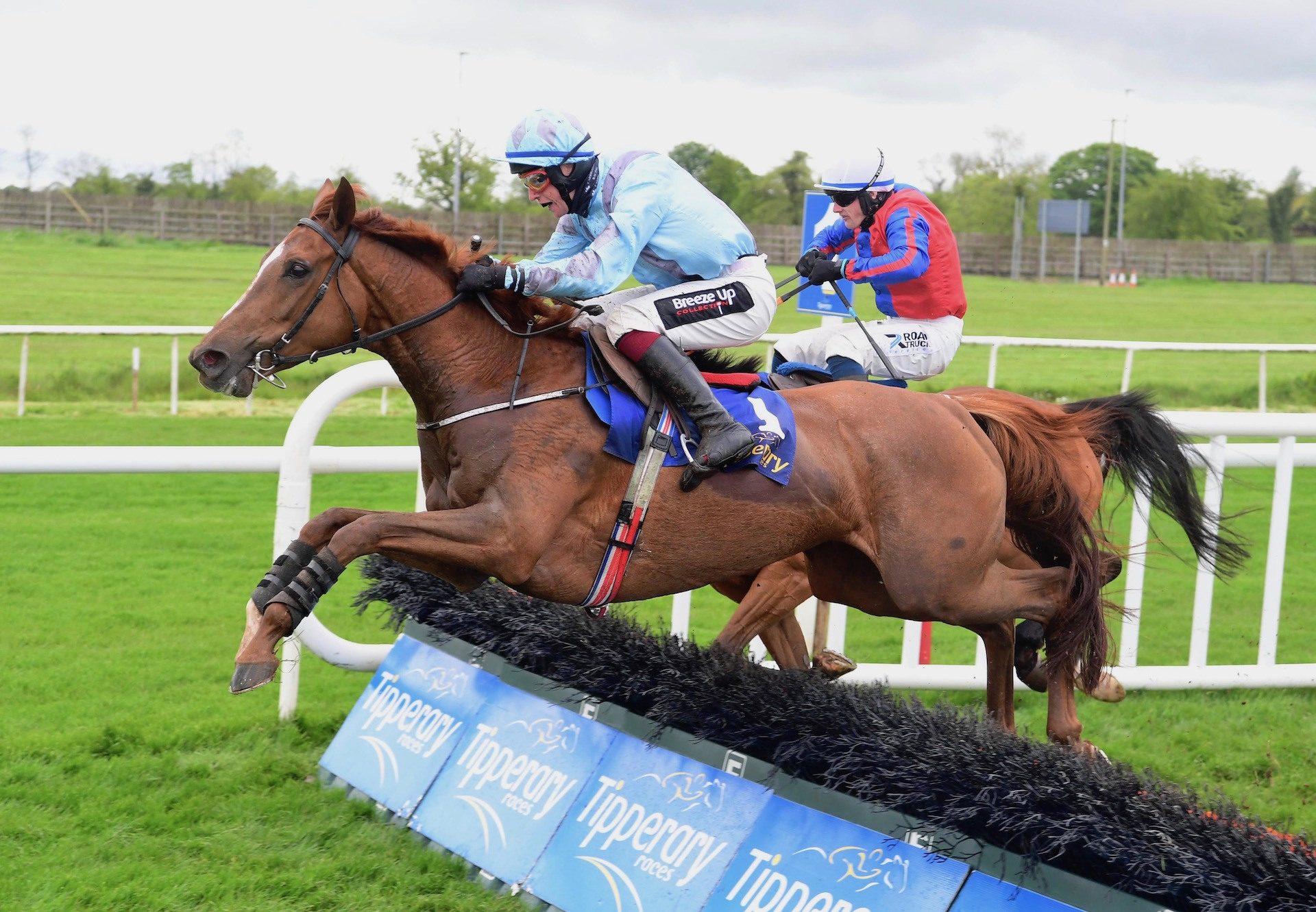 Lunar Display (Getaway) Wins The Mares Maiden Hurdle At Tipperary