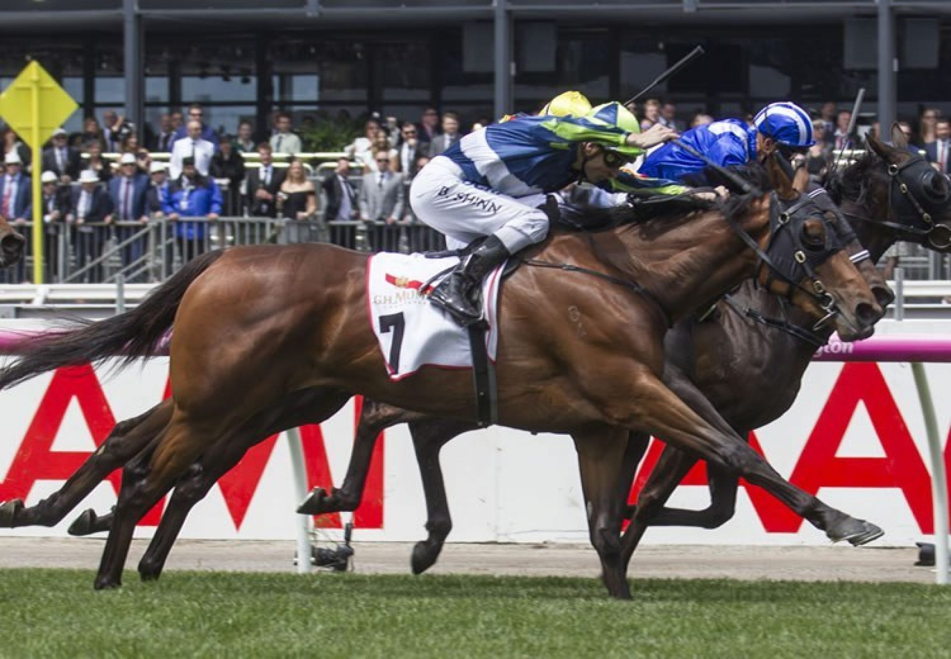 Luvaluva (Mastercraftsman) winning the G2 VRC Wakeful Stakes at Flemington