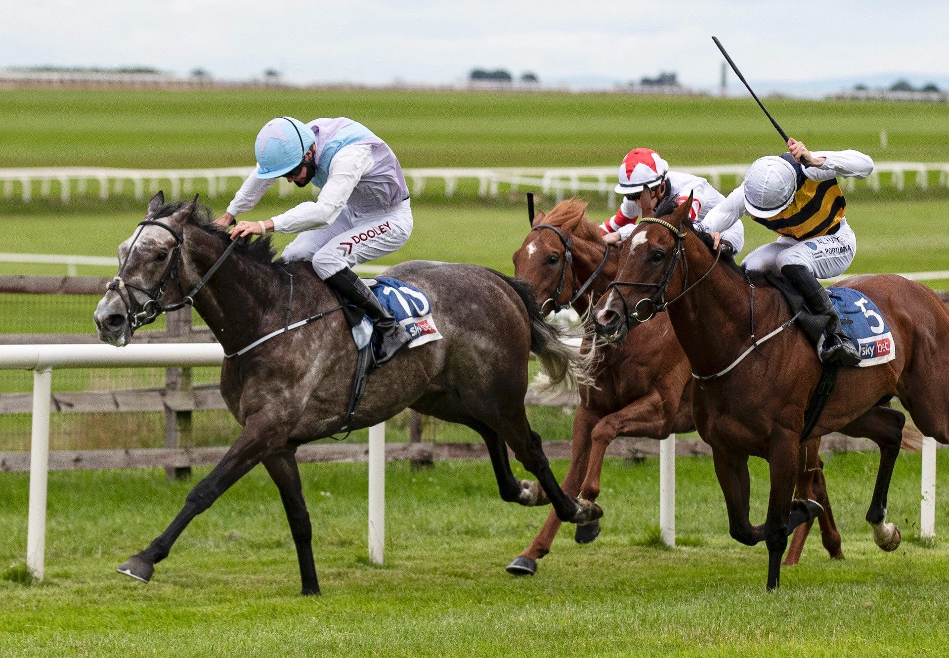 Lynwood Gold (Mastercraftsman) Wins The Ebor Trial at the Curragh