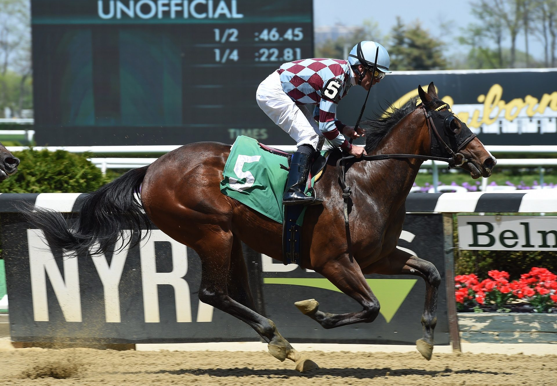 Mae Never No (No Nay Never) winning a maiden at Belmont