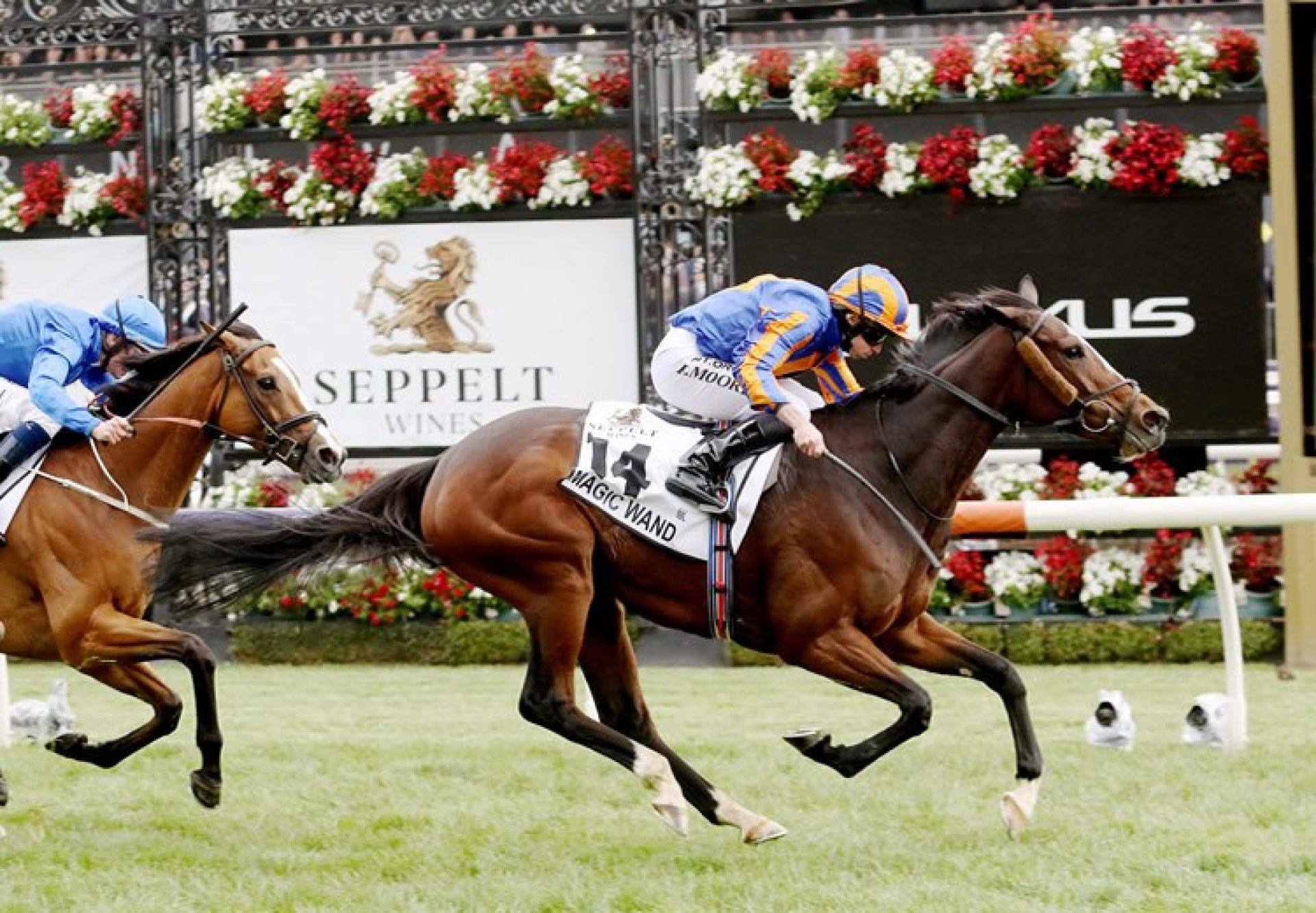 Magic Wand (Galileo) winning the Gr.1 Mackinnon Stakes at Flemington