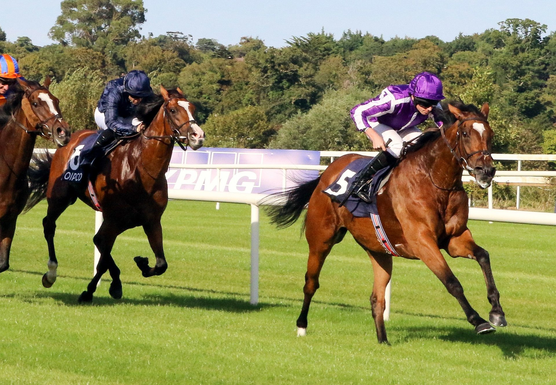 Magical (Galileo) Wins The Irish Champion Stakes at Leopardstown