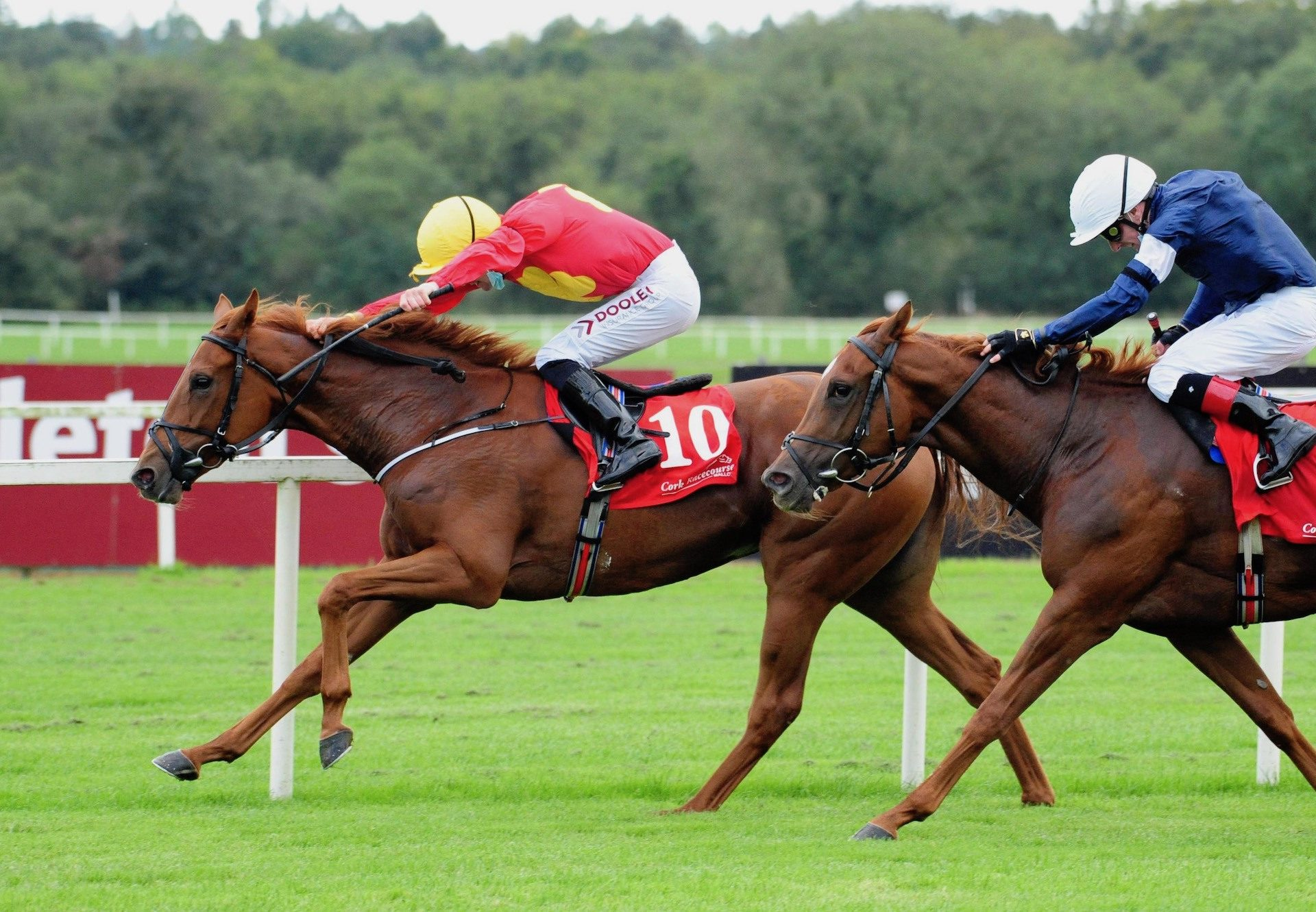 State Of Bliss (Gleneagles) winning at Chester