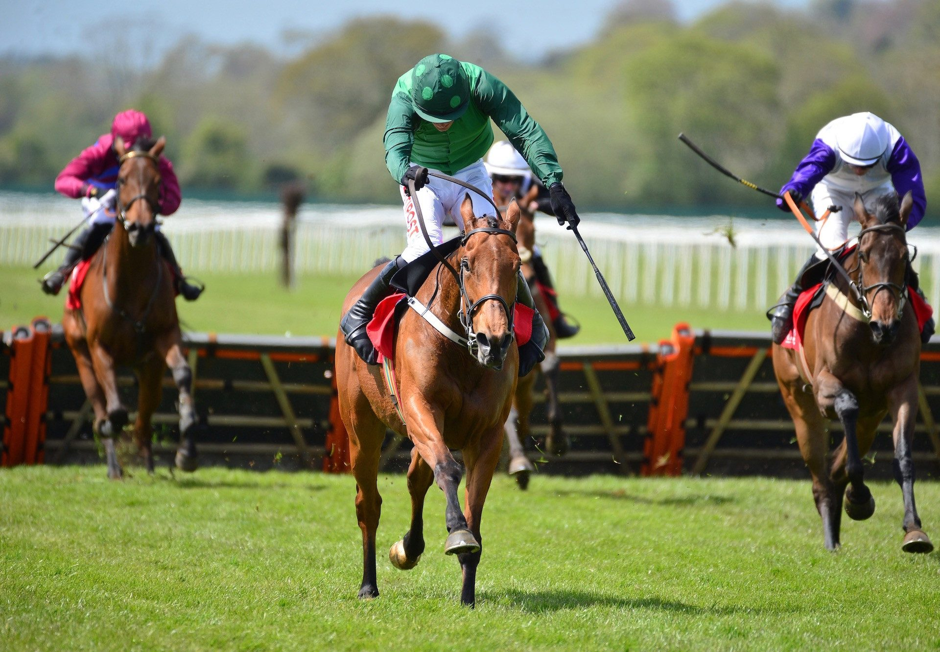 Manitopark AA (Walk In The Park) Wins The Mares Maiden Hurdle At Cork