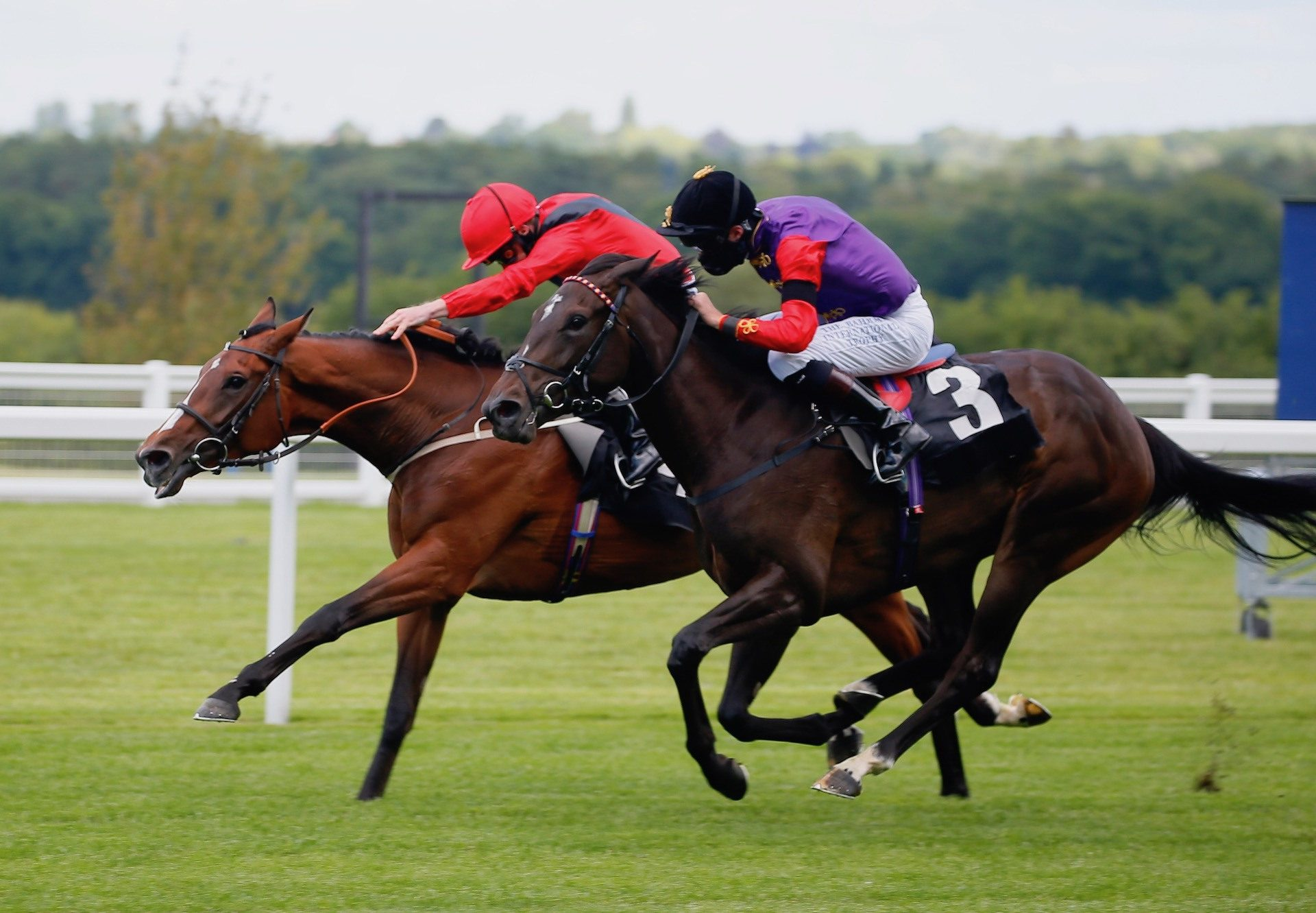 Margaret Dumont (Camelot) Wins Her Maiden At Ascot