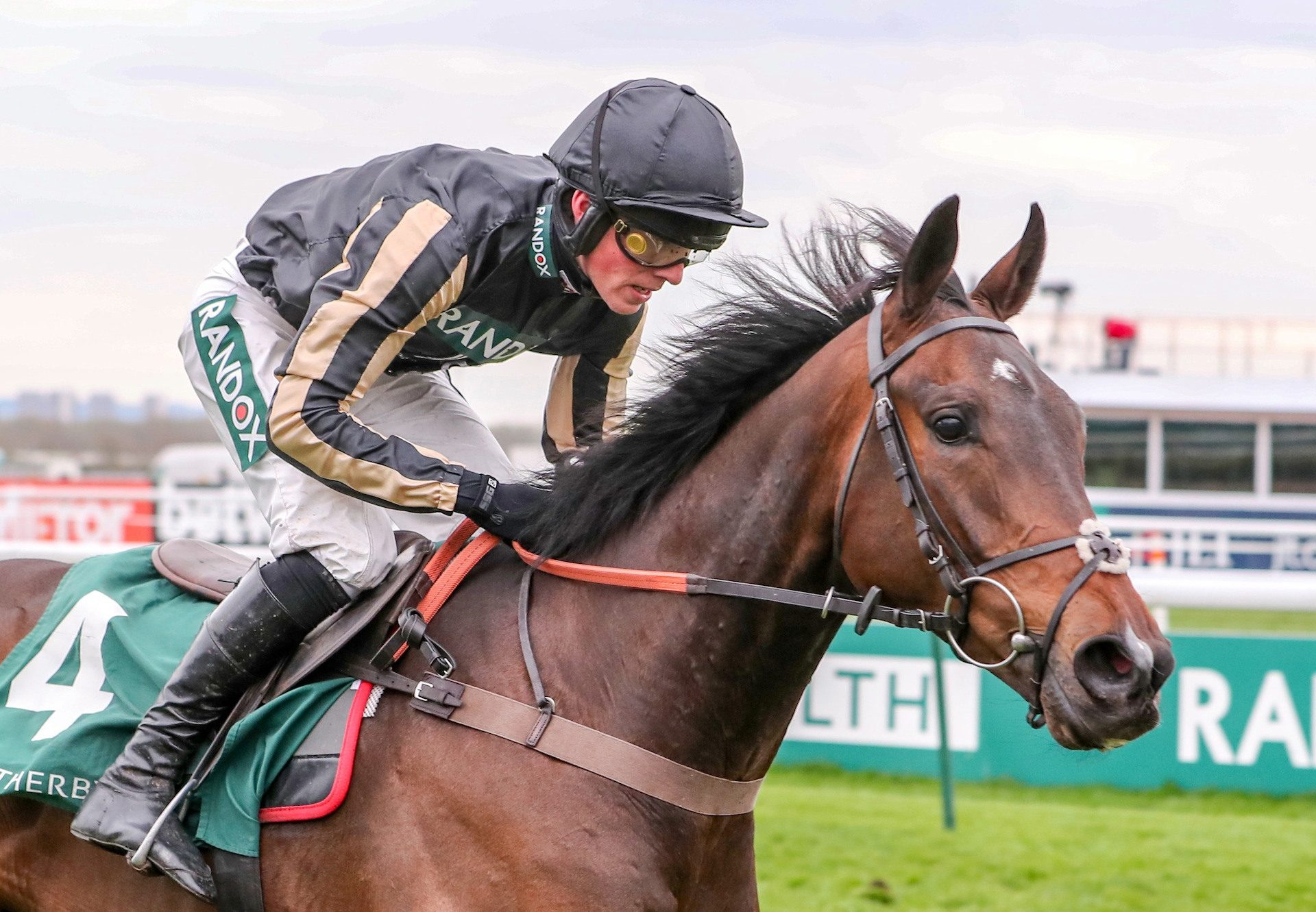 McFabulous By Milan Wins The Grade 2 Aintree Bumper