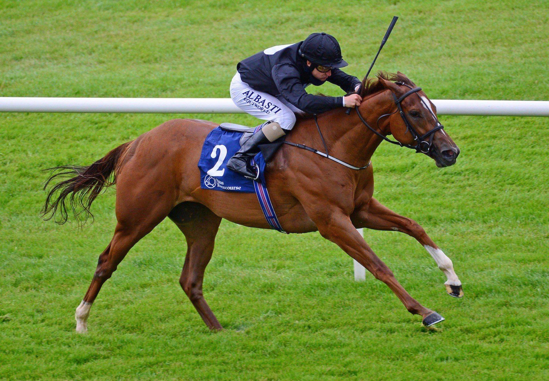 Millisle (Starspangledbanner) Wins The Gr.3 Ballyogan Stakes at Naas
