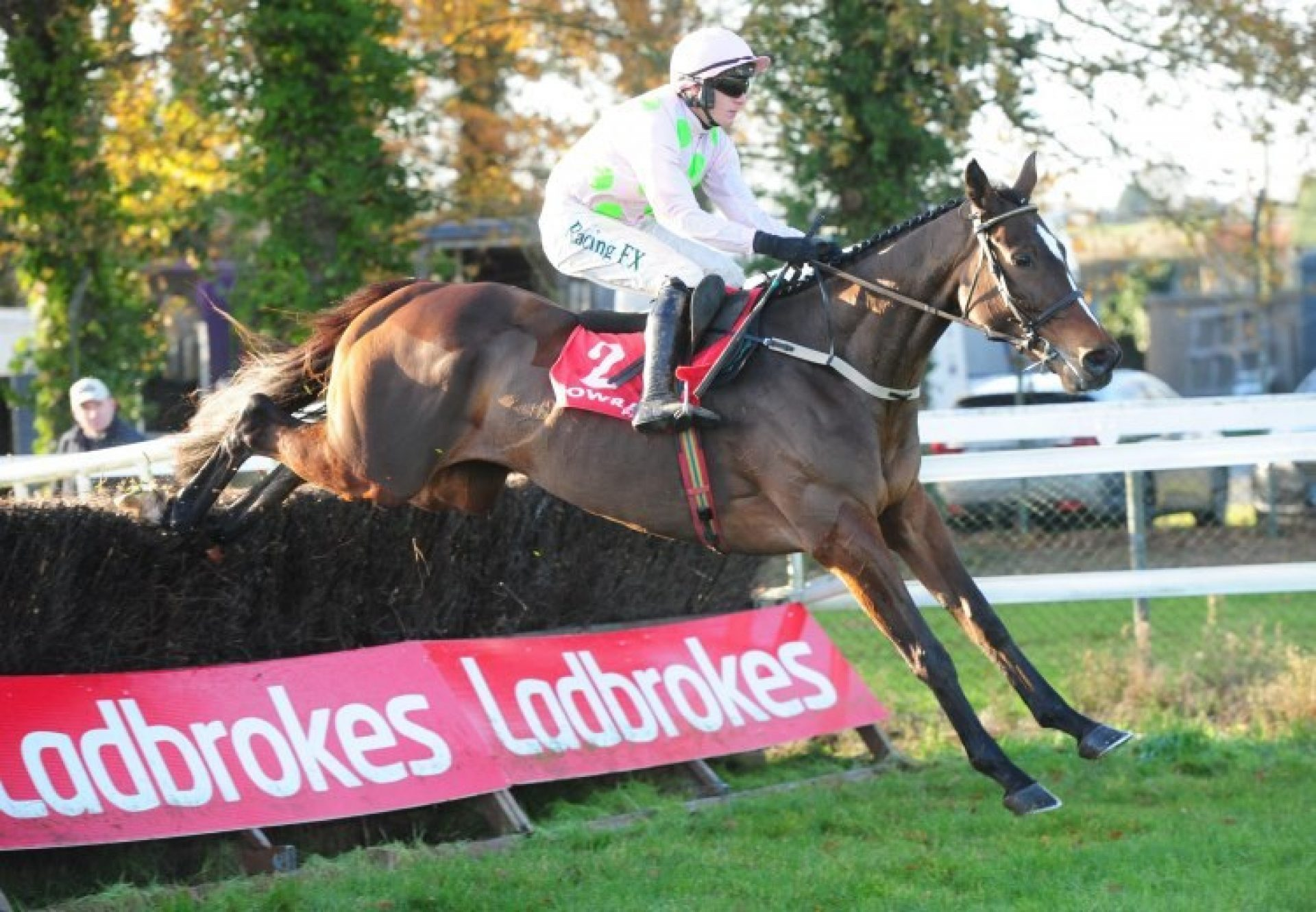 Min (Walk In The Park) winning a conditions chase at Gowran Park