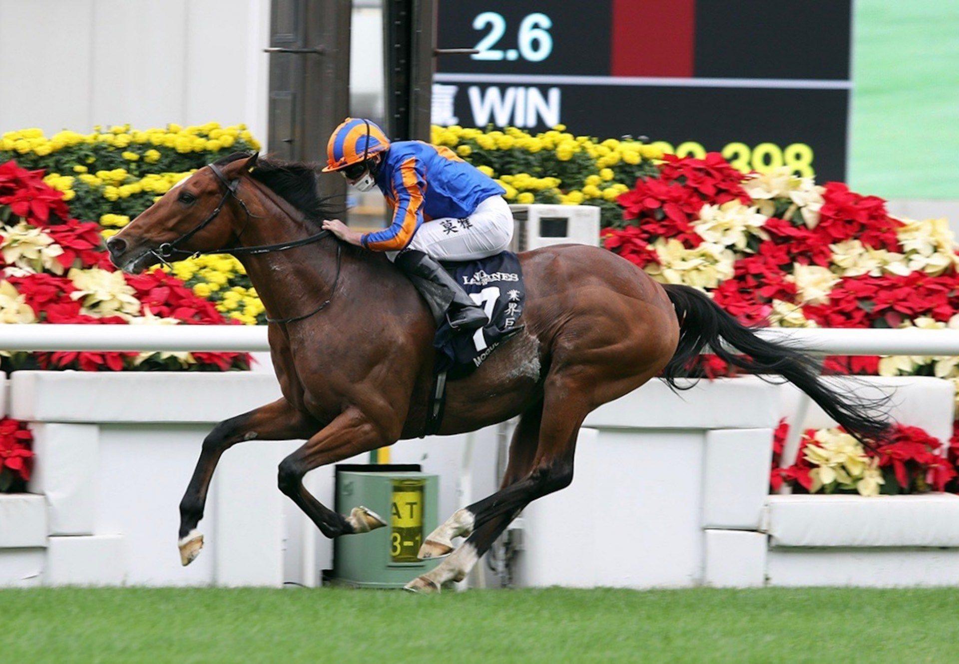 Mogul (Galileo) Wins The Gr.1 Hong Kong Vase at Sha Tin