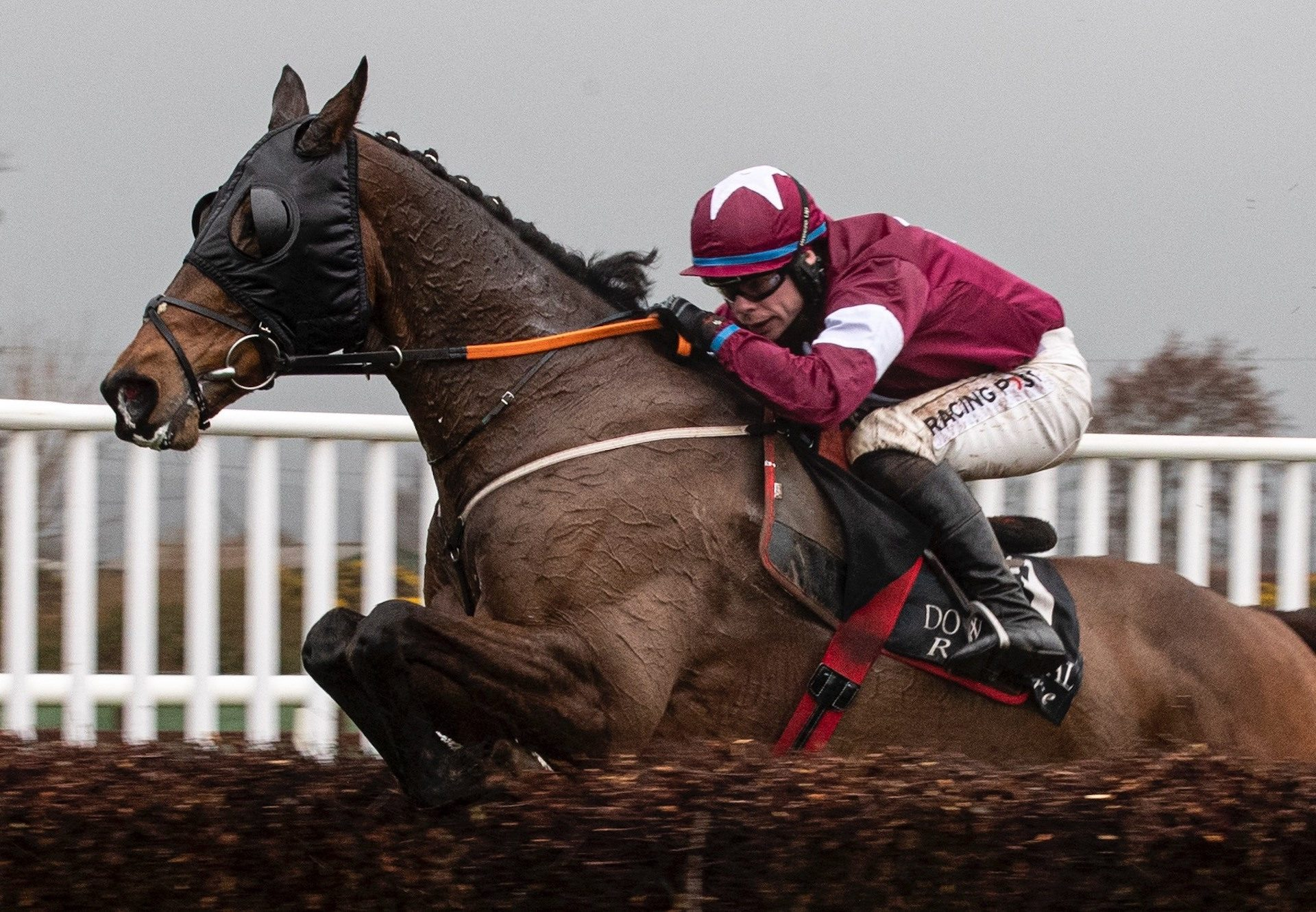 Song Of Earth (Mahler) wins bumper at Wexford